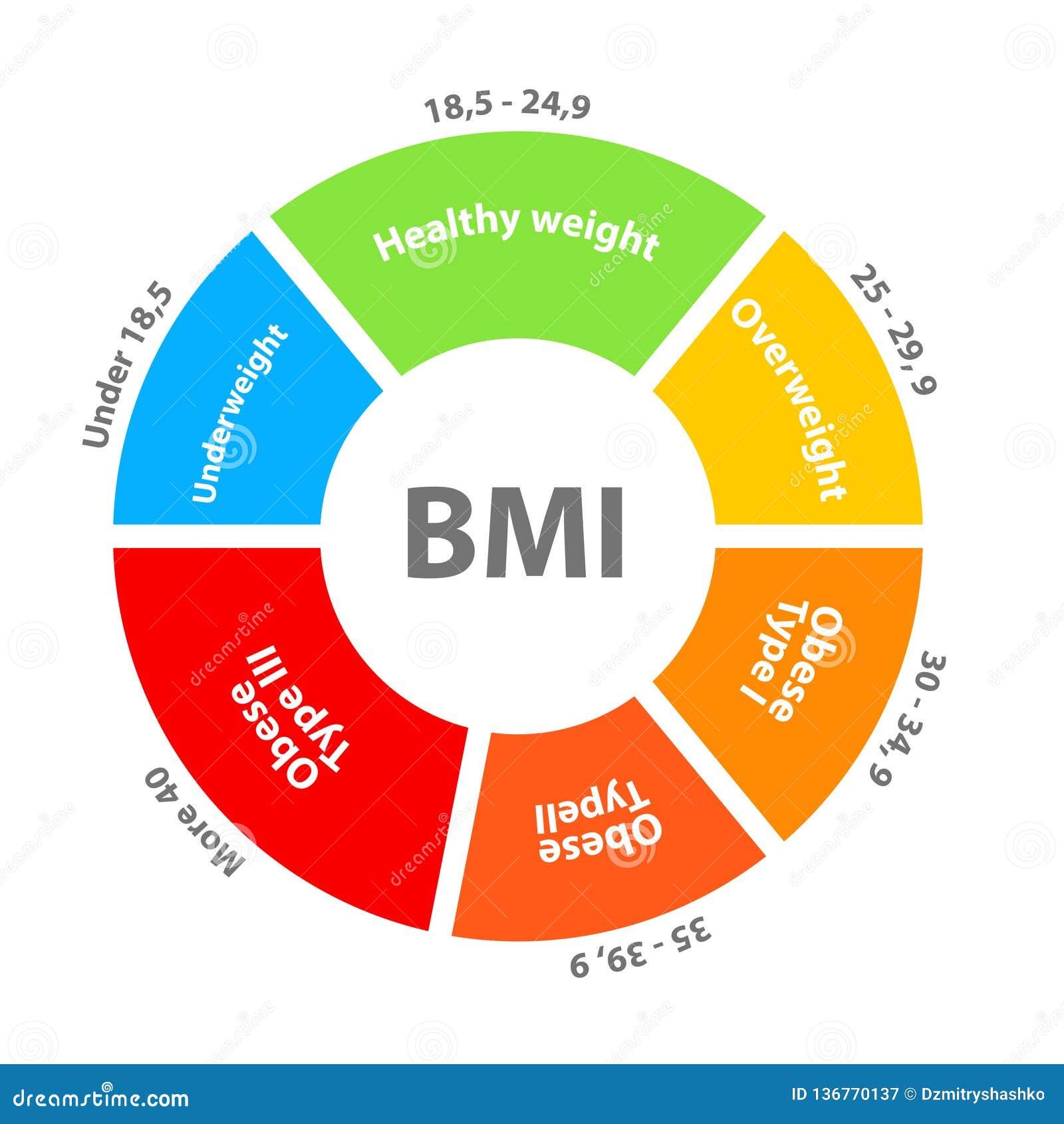 BMI Oder Body Maß Index Skaladiagramm Vektor Abbildung ...