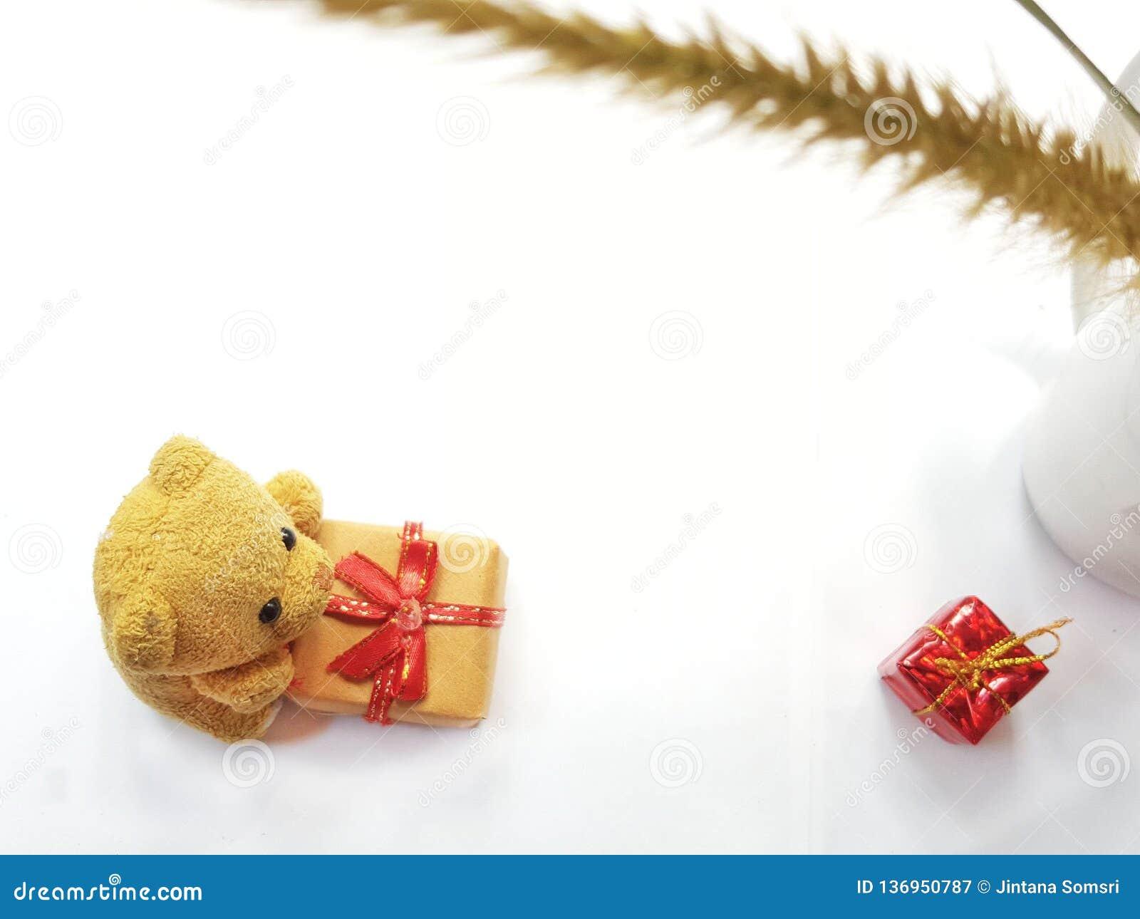 Boîte-cadeau de nature et de fleurs