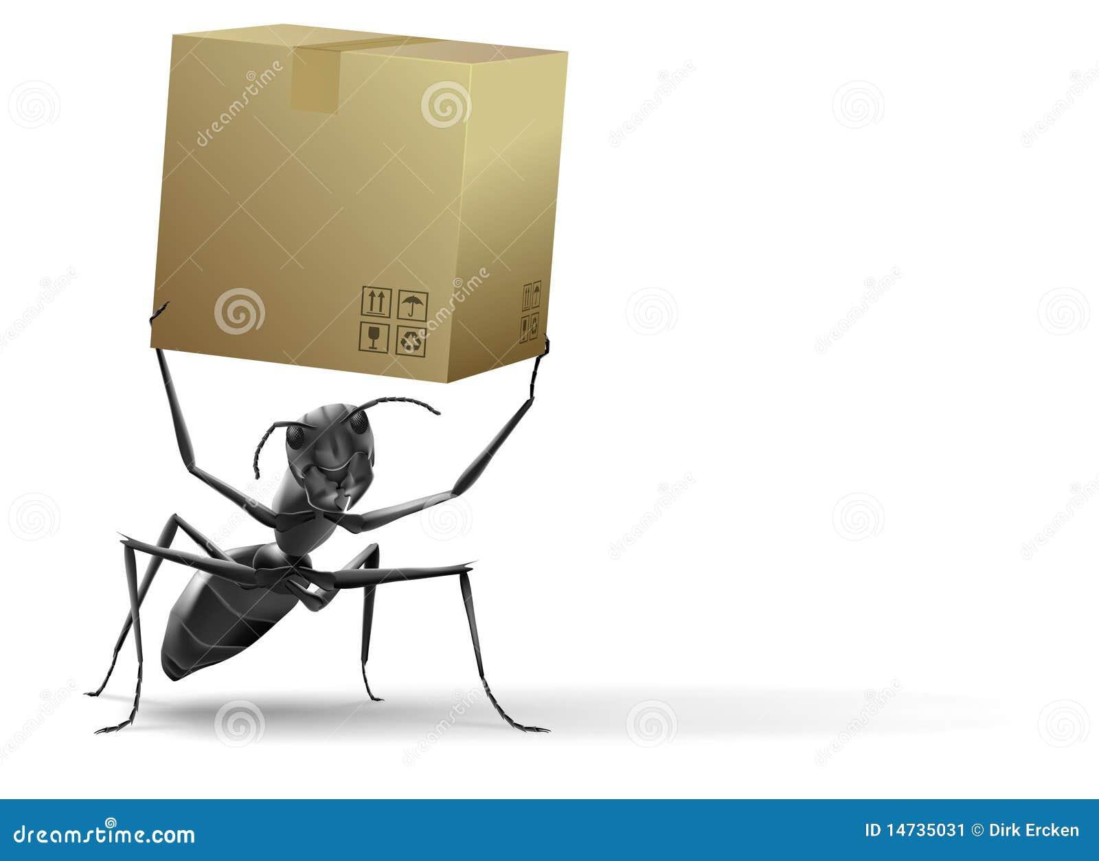 Boîte en carton de levage de petite fourmi
