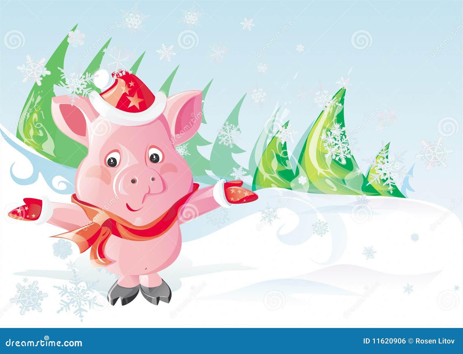Boże narodzenia świniowaci