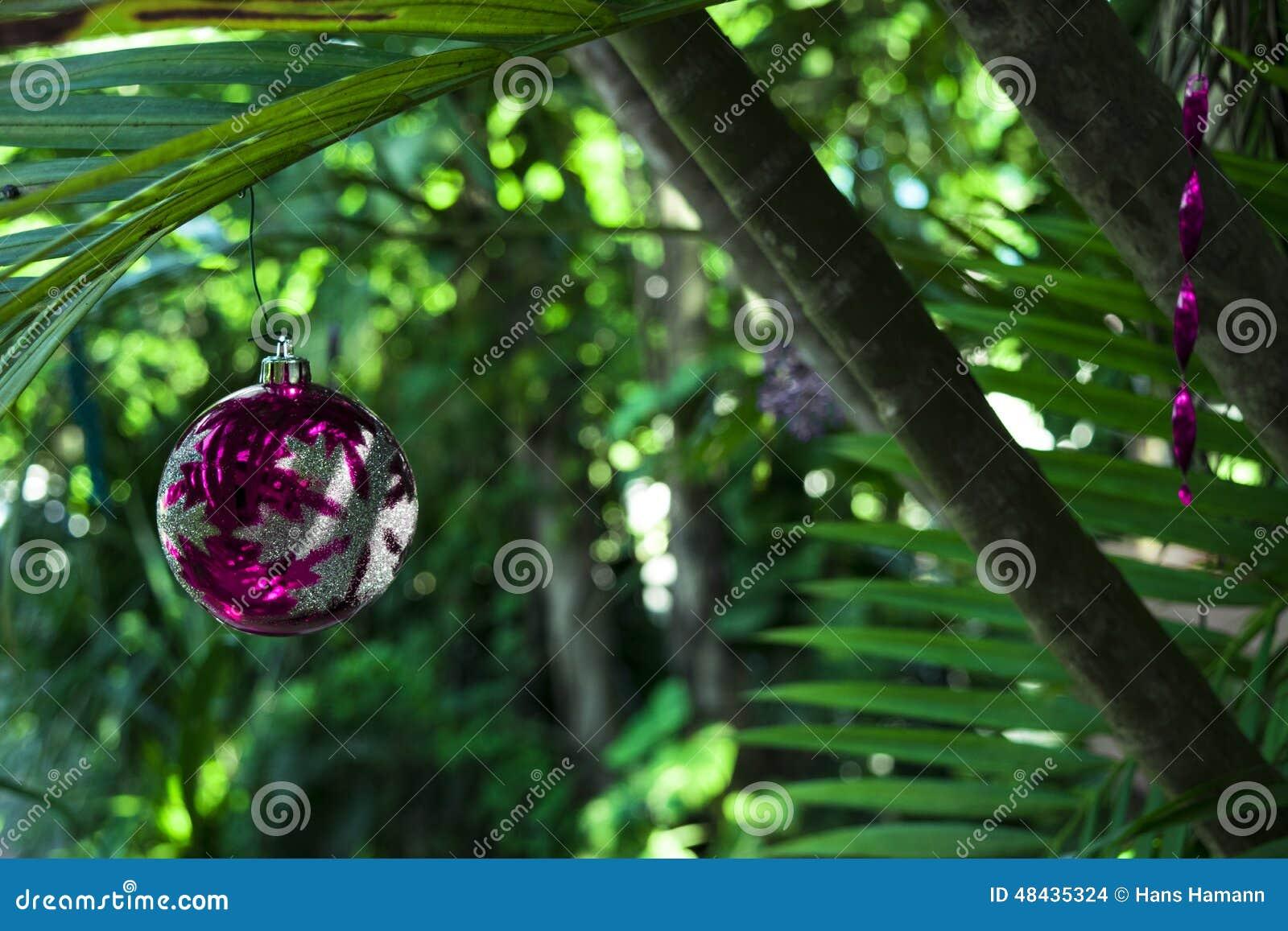Boże Narodzenia na wyspie