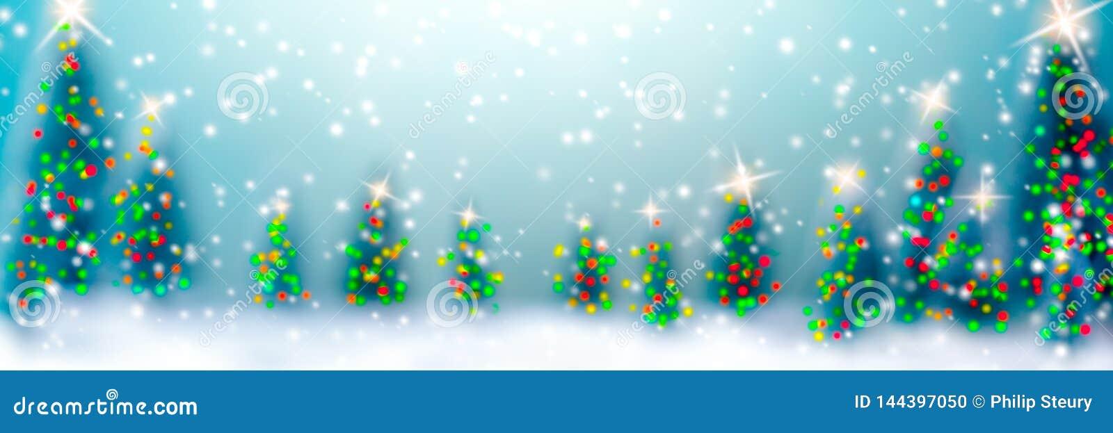 Boże Narodzenia w lesie