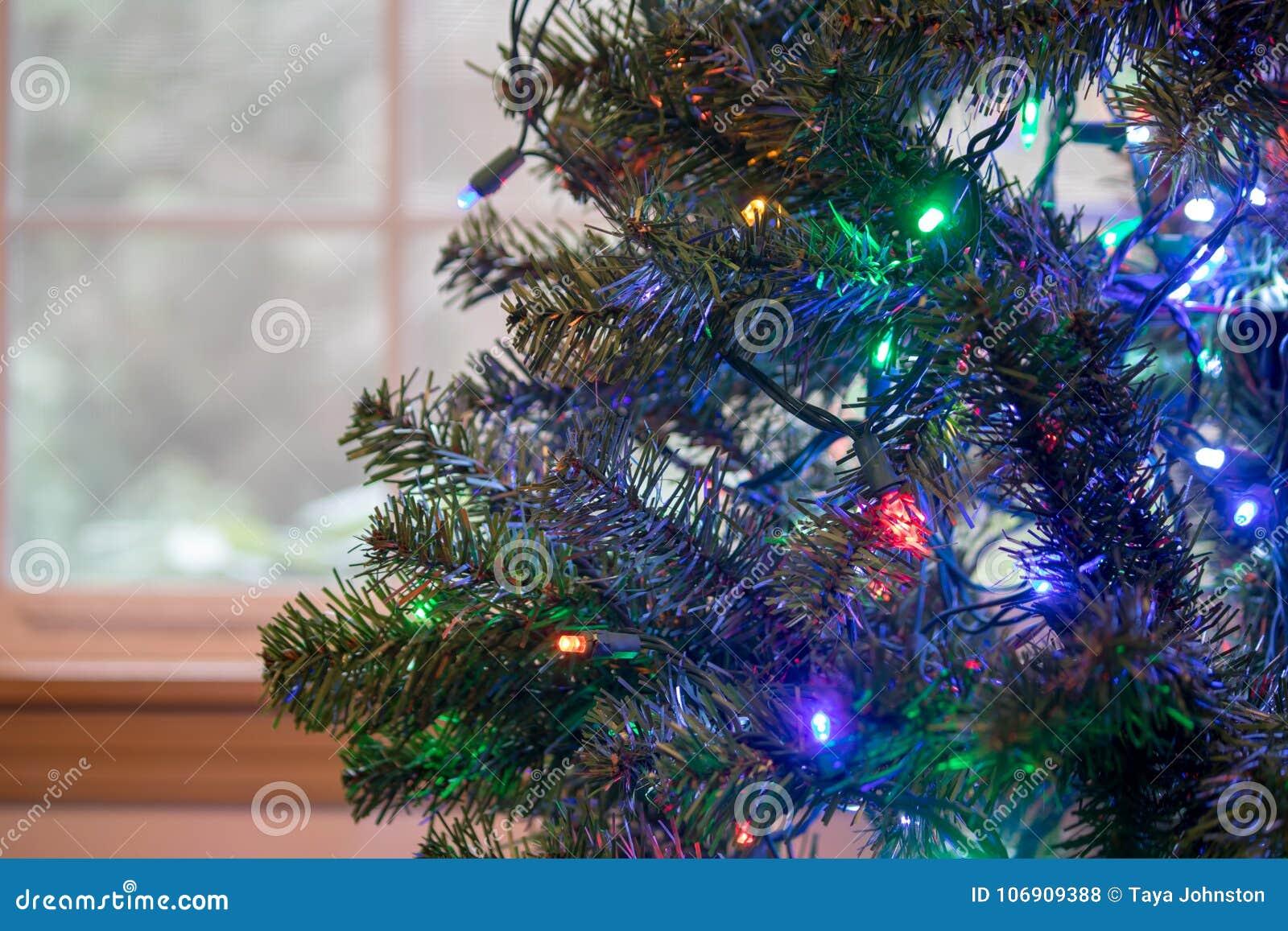 Bożonarodzeniowe światła zawiązujący up w zielonym drzewie
