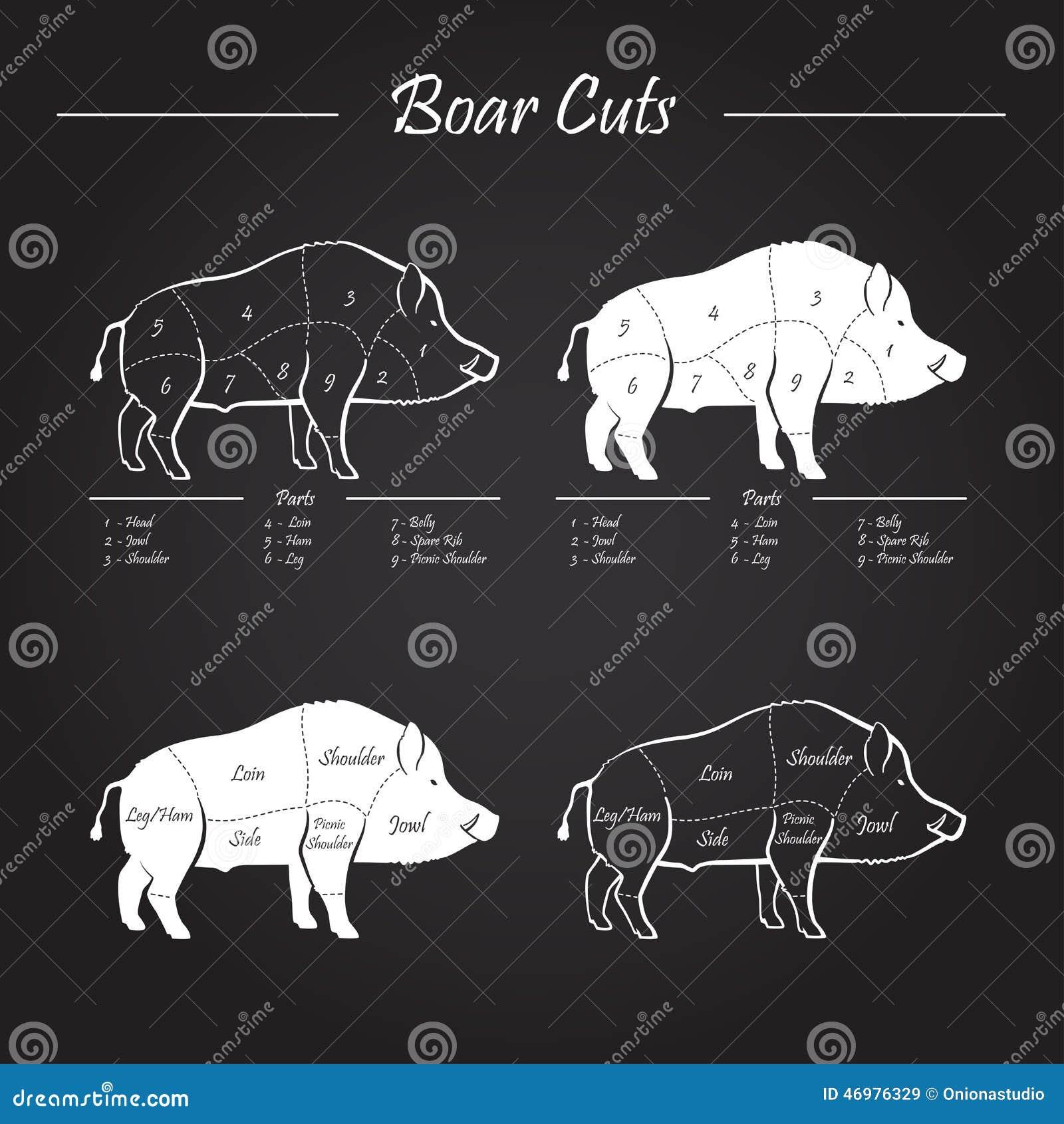 Boar Meat Diagram - Product Wiring Diagrams •