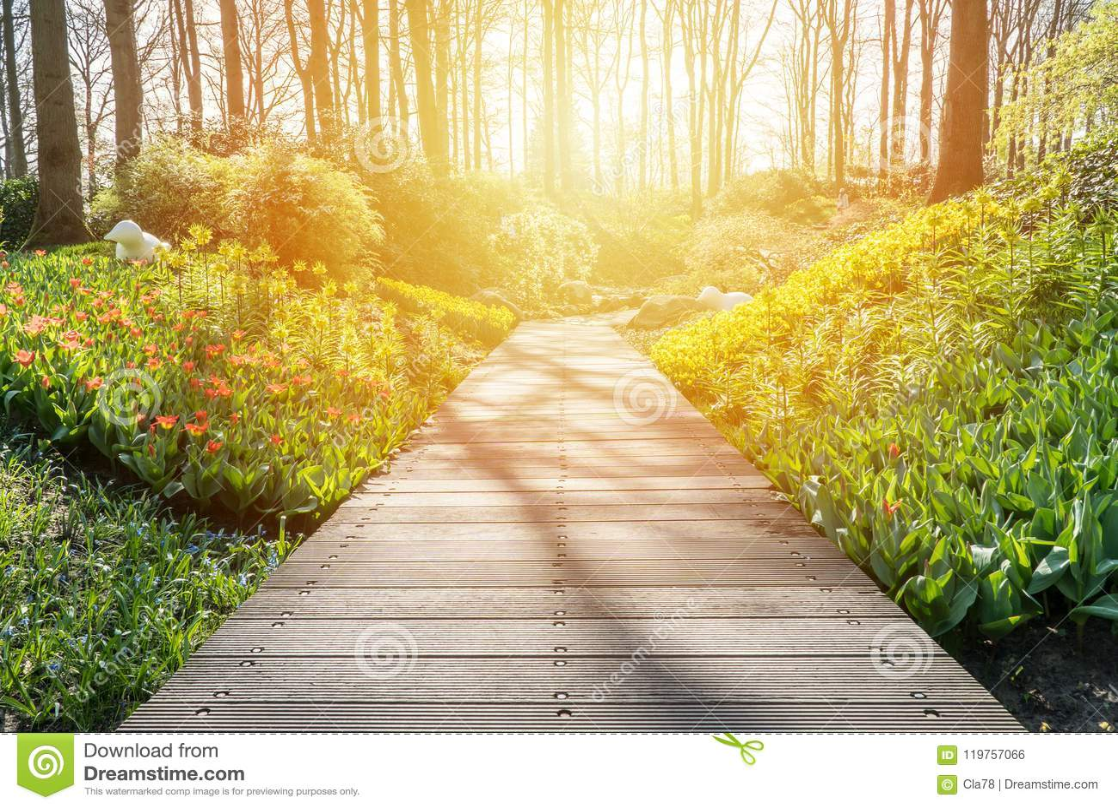Boardwalk in a beautiful garden stock photo image of idyllic boardwalk in a beautiful garden izmirmasajfo