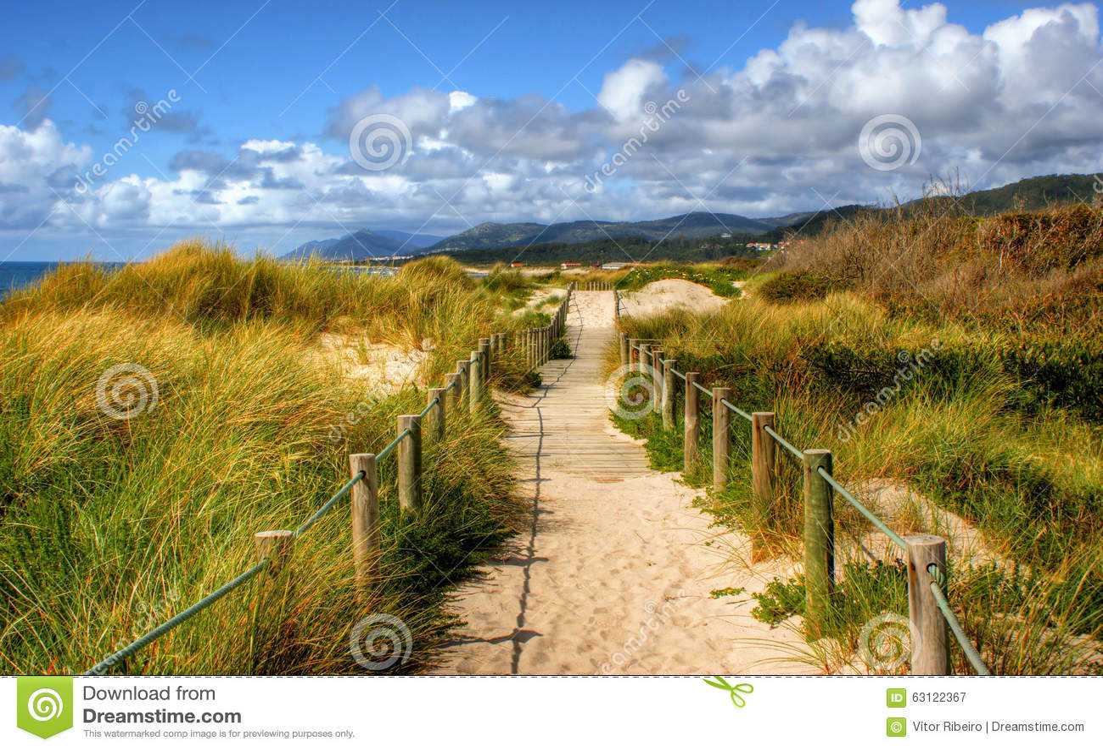 Boardwalk through the sand dunes on beach