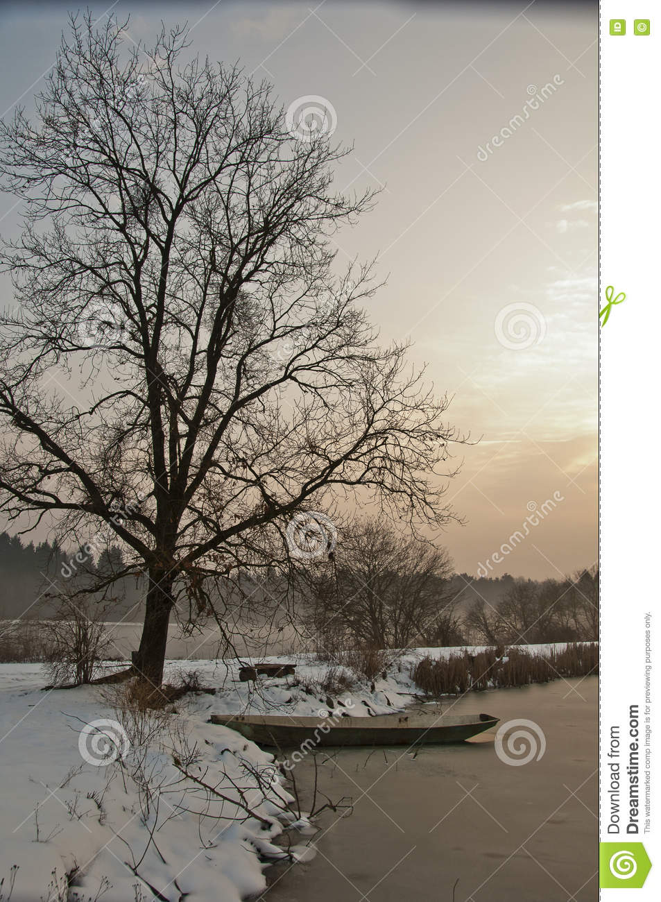 Boat beneath a tree on winter lake at sunset