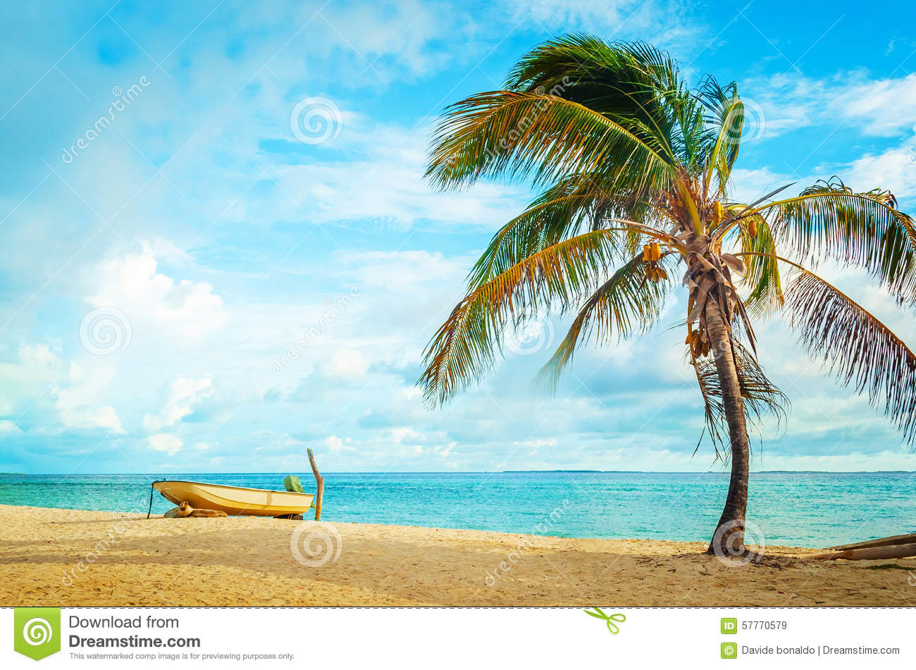 Caribbean Relaxation: Boat And Coconut Tree On Caribbean Beach Stock Image