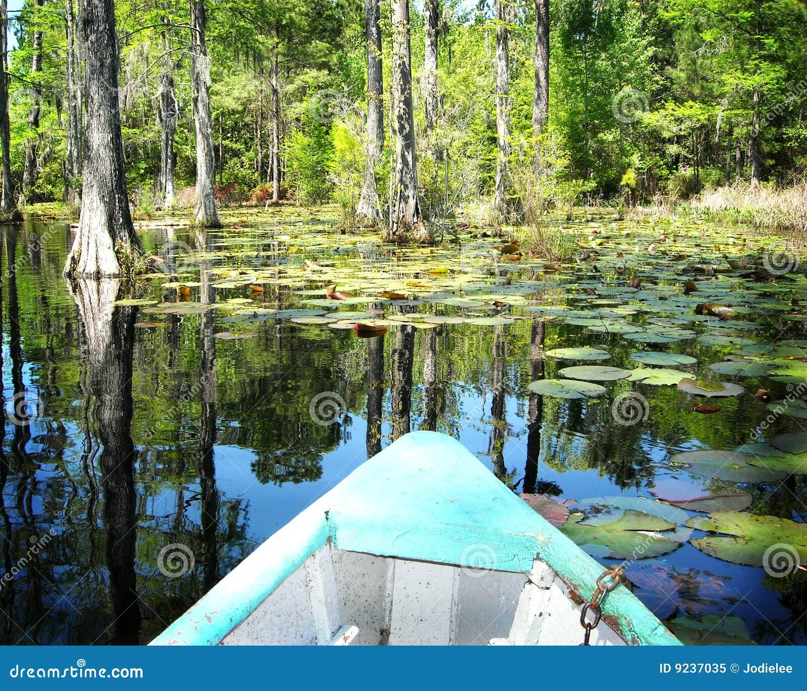 Boat On Cypress Swamp Gardens North Carolina Royalty Free ...