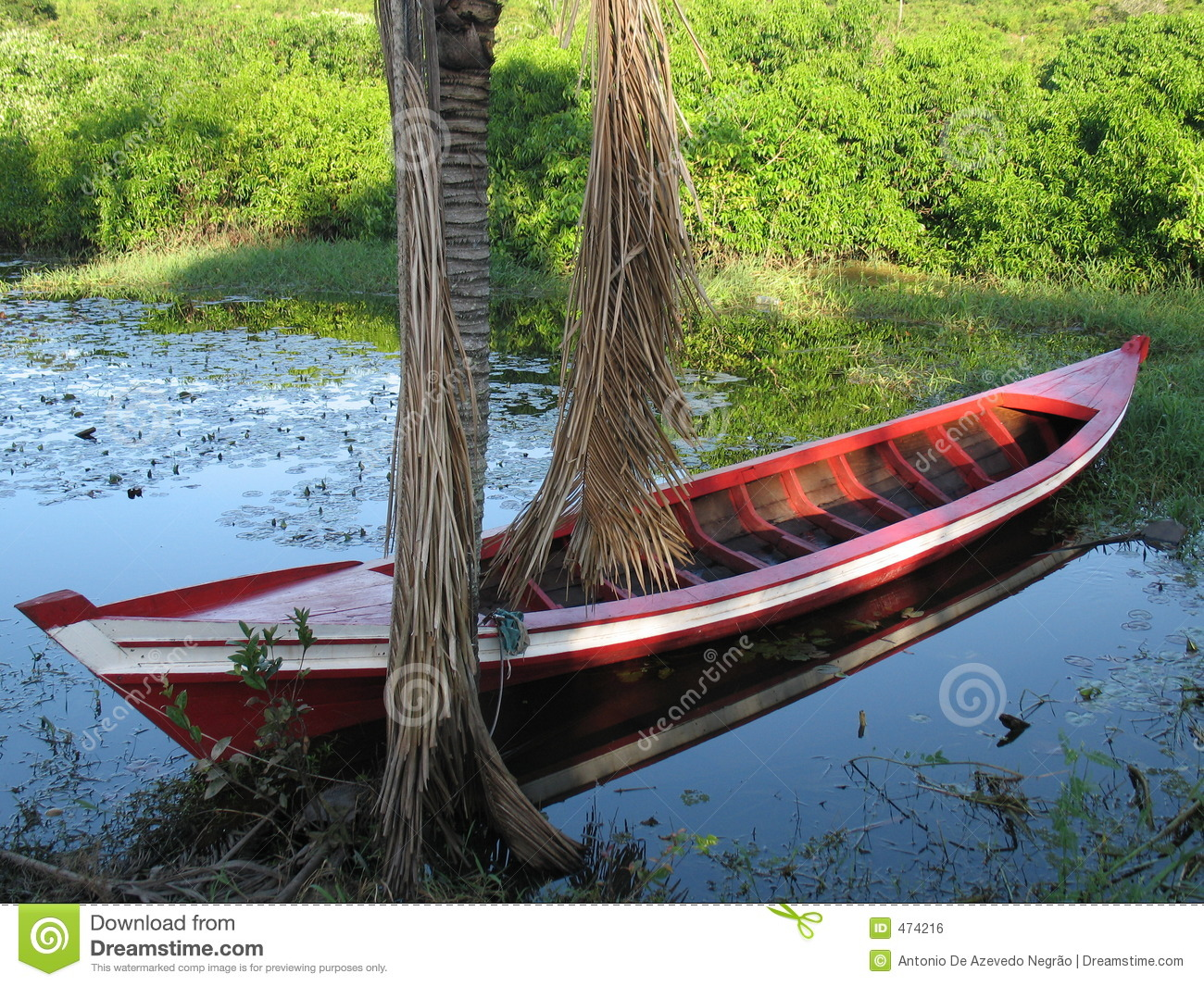 Download Boat in the lake stock photo. Image of amazonia, river - 474216