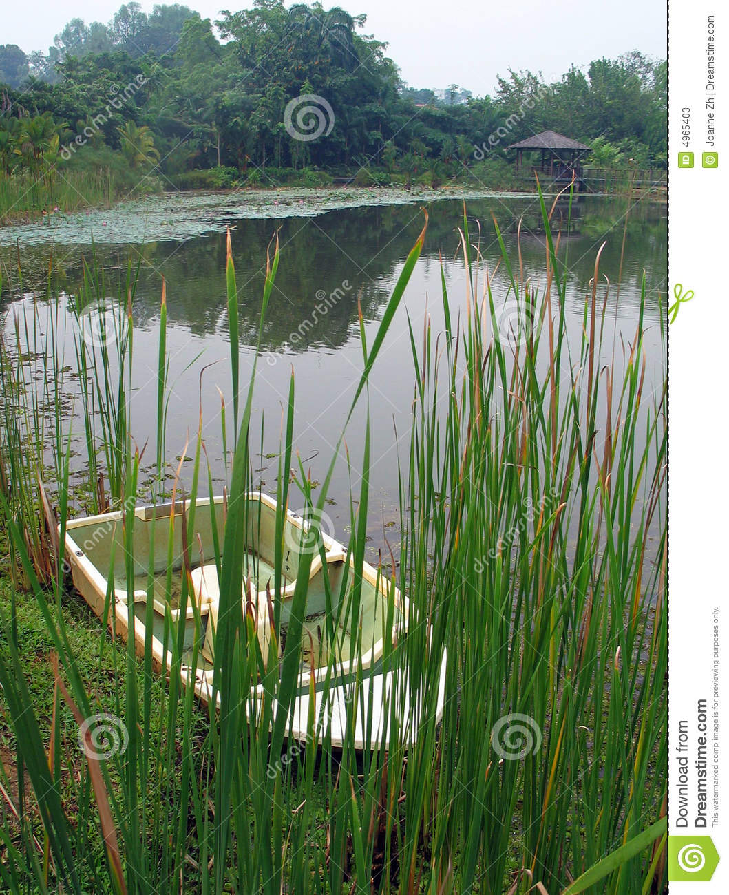 Download Boat by lake & reeds stock image. Image of exotic, cattails - 4965403