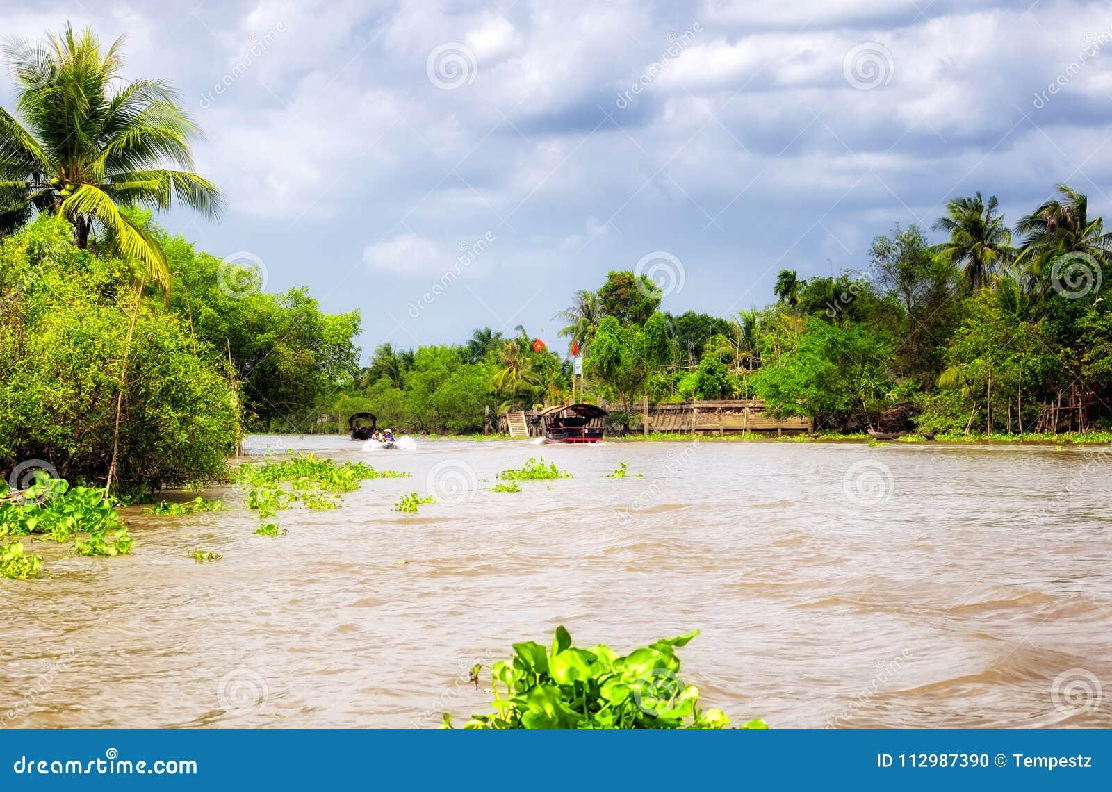 Mekong river delta south vietnam