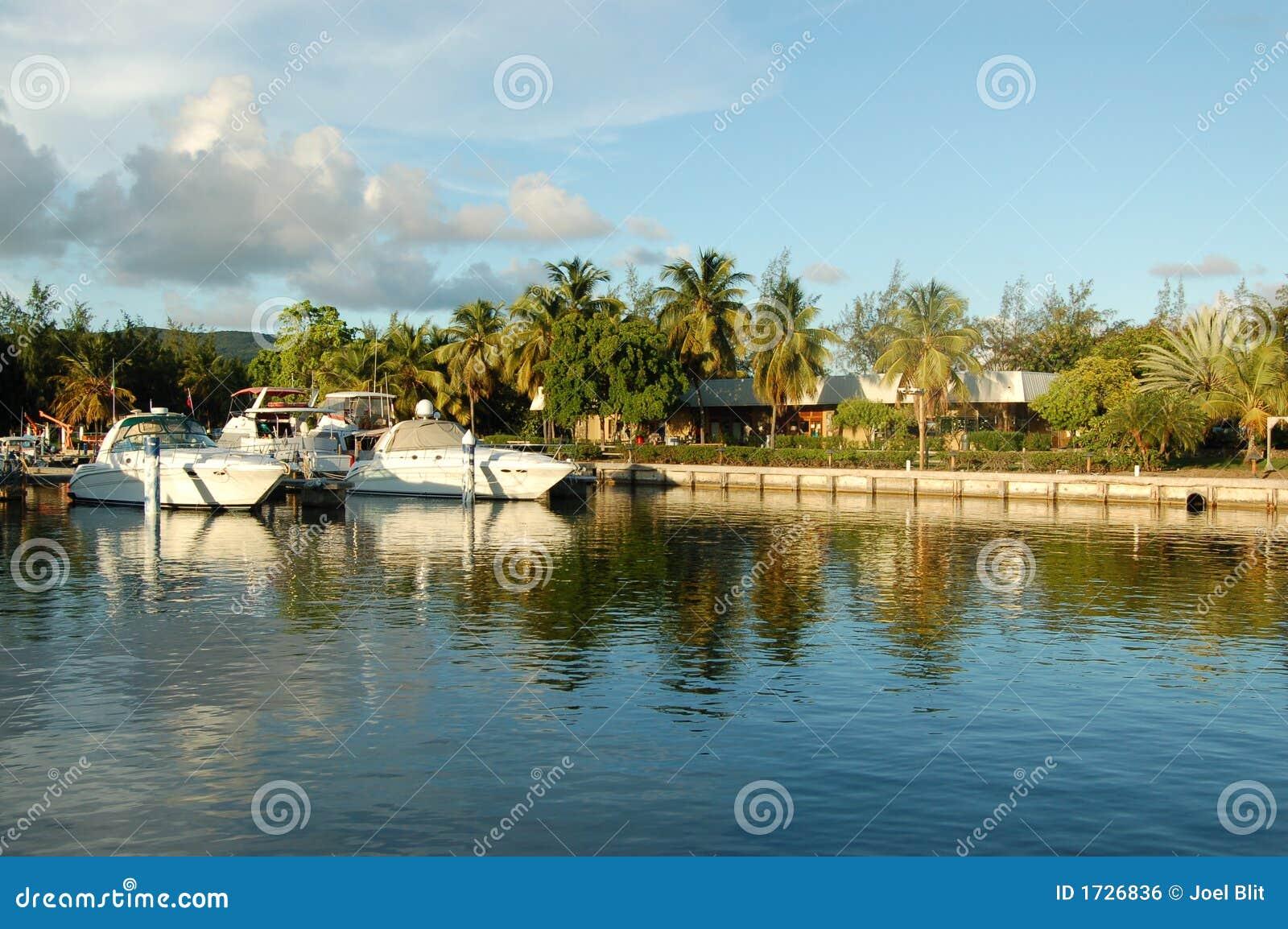 Boats docked in marina
