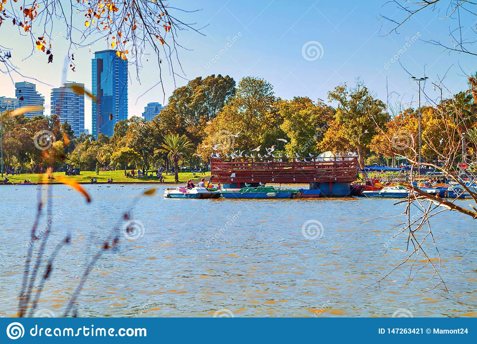 Boats in the park on a
