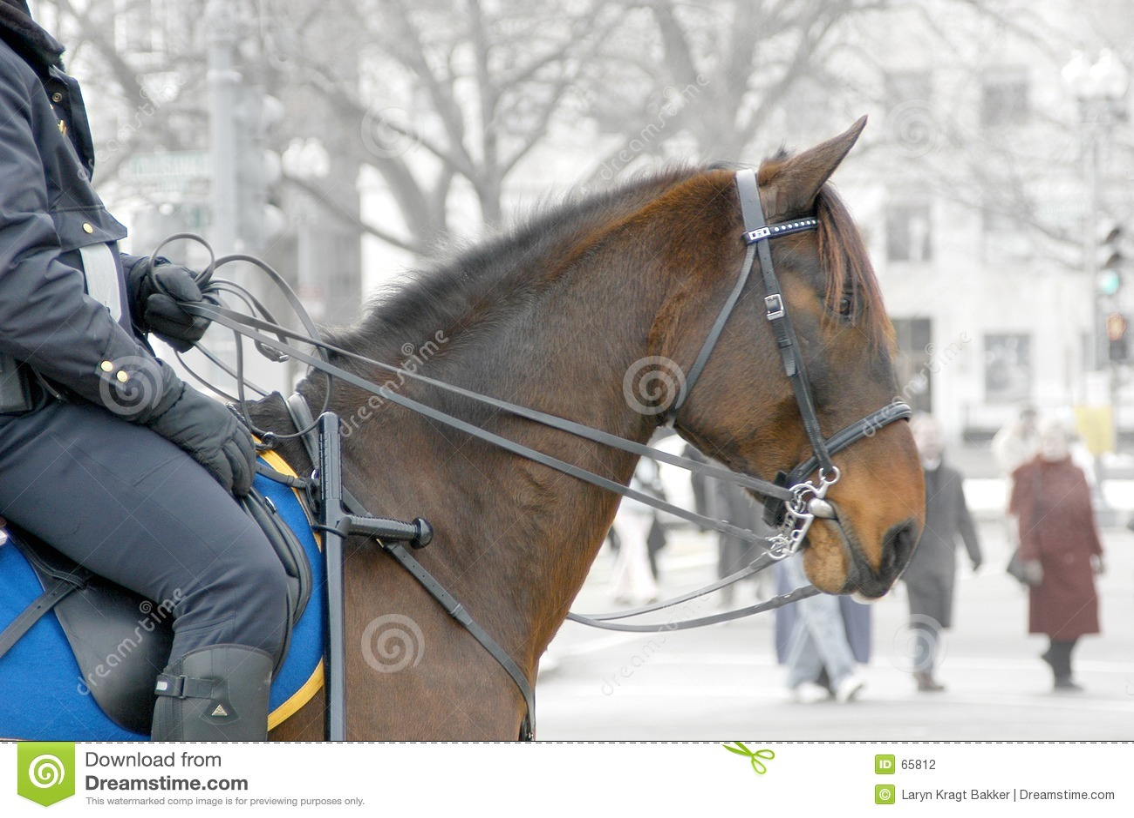 Bobina em horseback