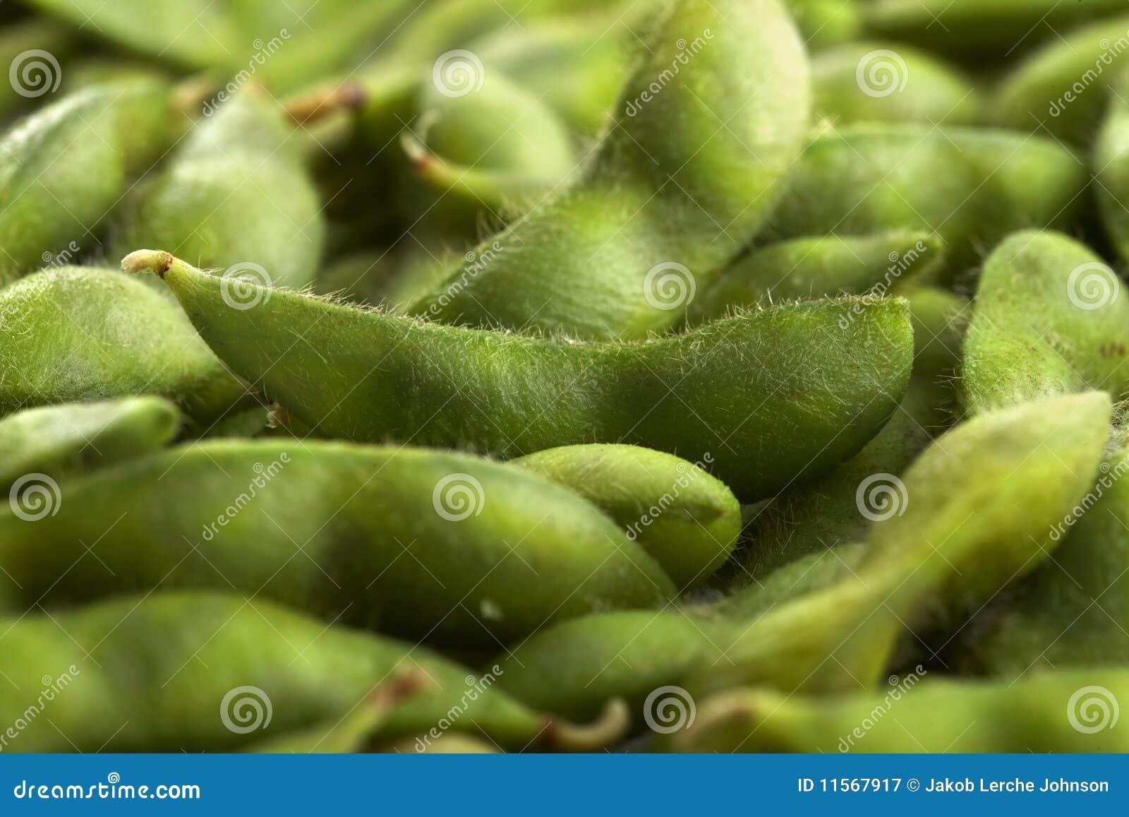 Bobowy edamame połuszczy soya