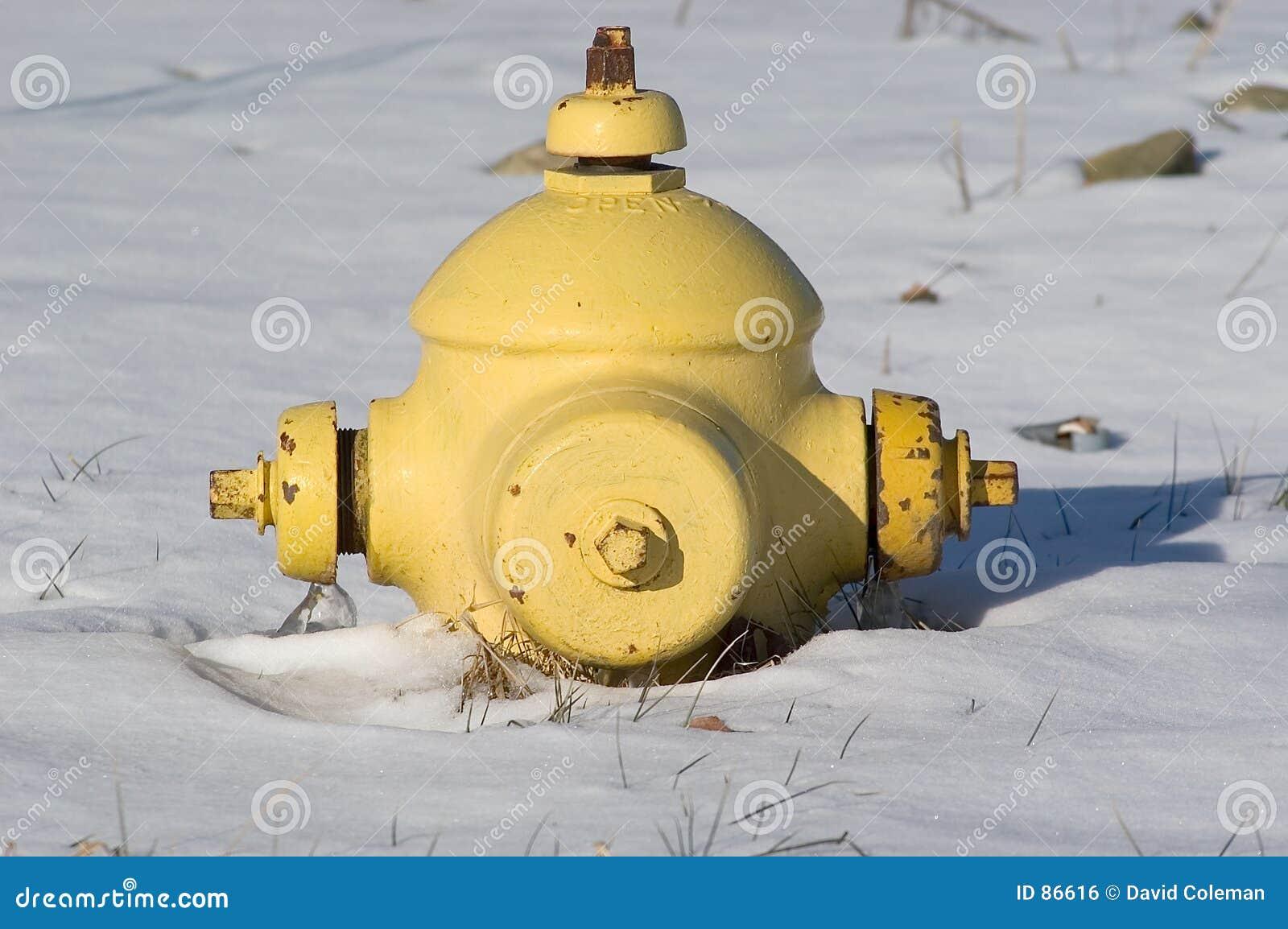 Boca de incendio corta en nieve