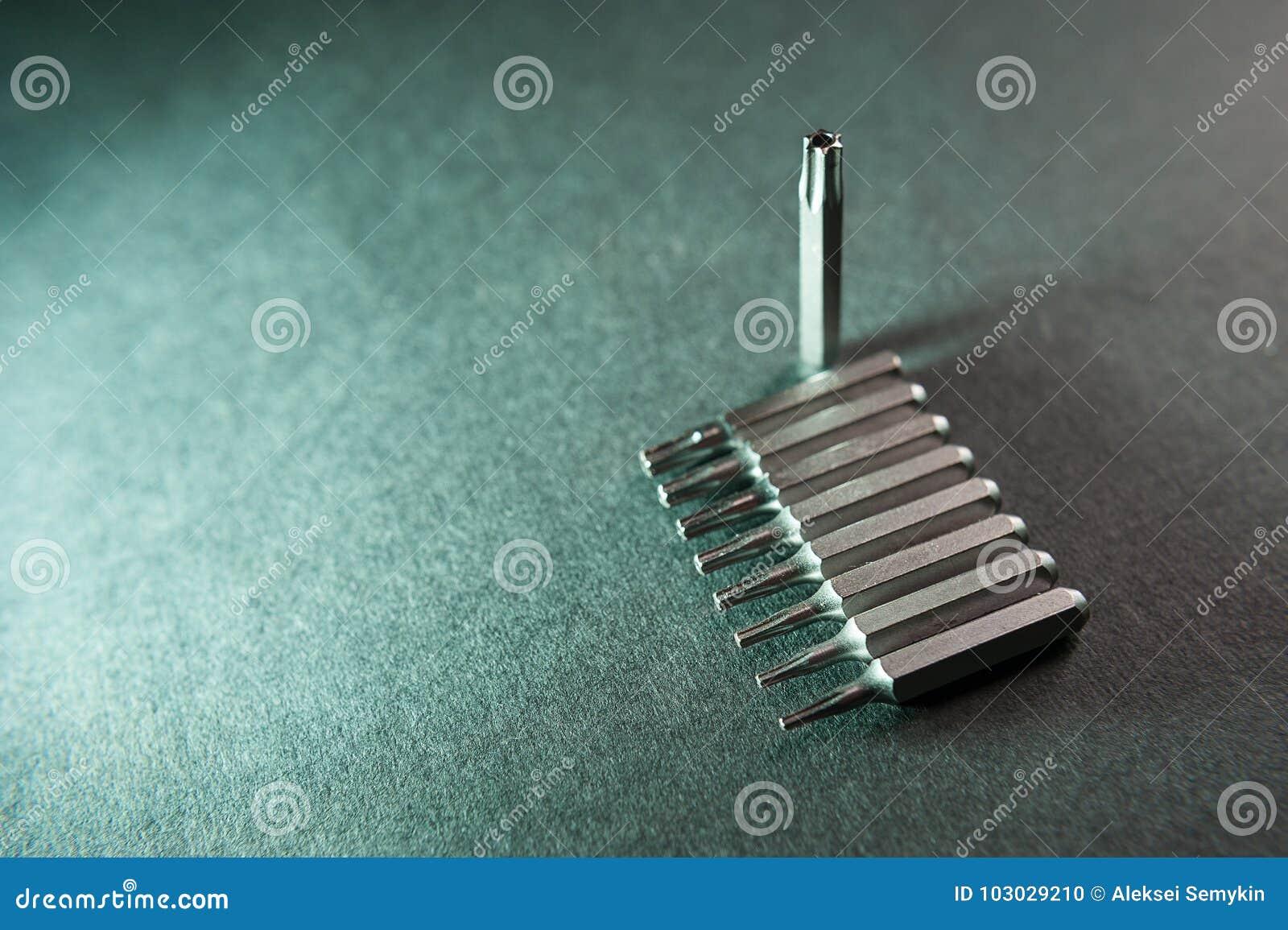 Bocados de chave de fenda removíveis, nove em seguido, um torx
