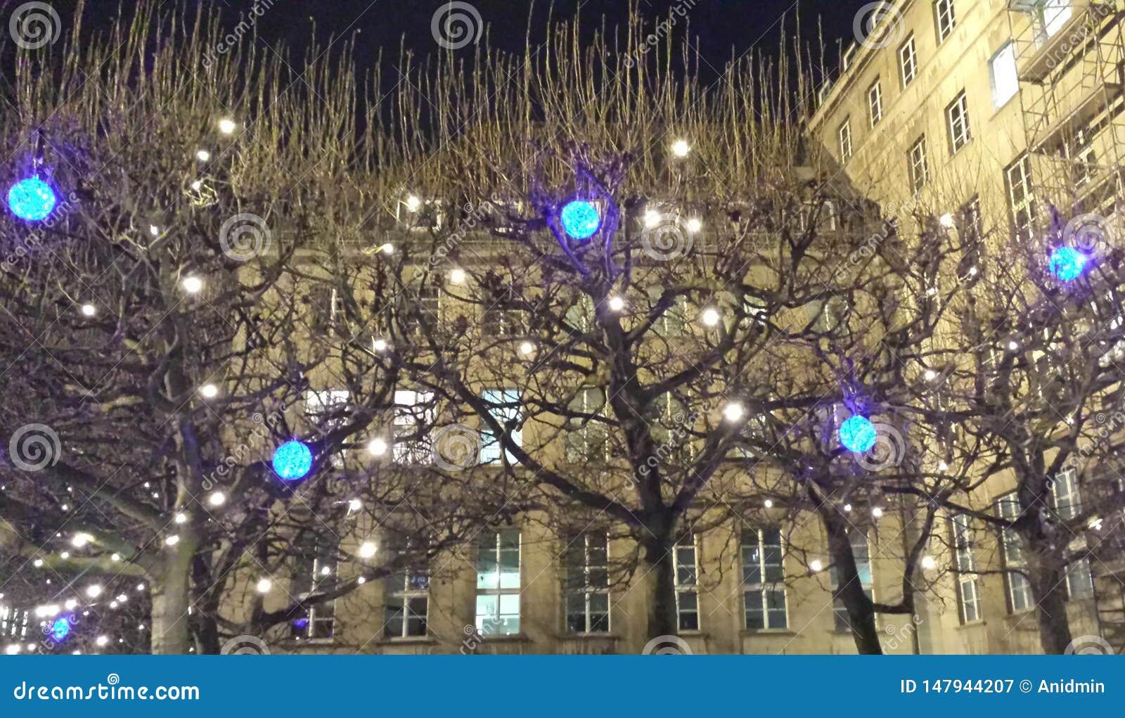 Bochum, Alemanha - 12 de dezembro de 2016: L?mpadas azuis e brancas do diodo emissor de luz nas ?rvores no fundo da c?mara munici