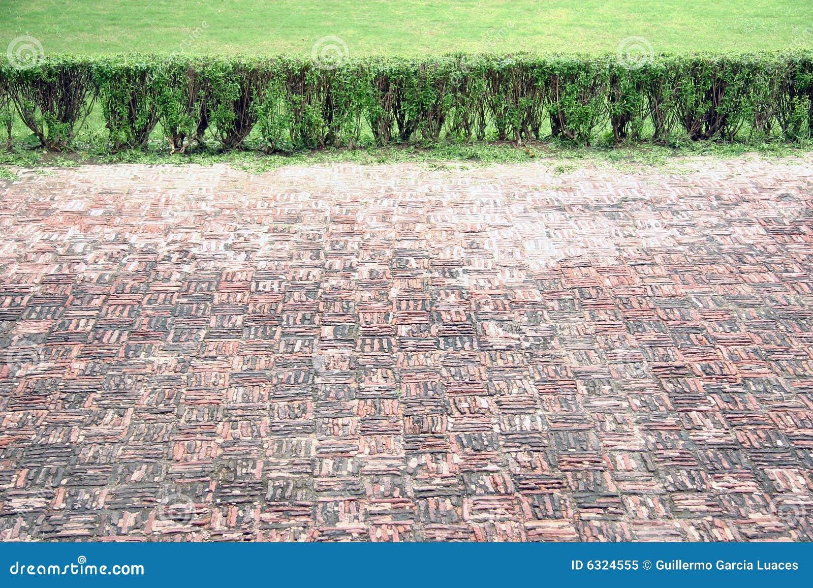 Boden und Gras
