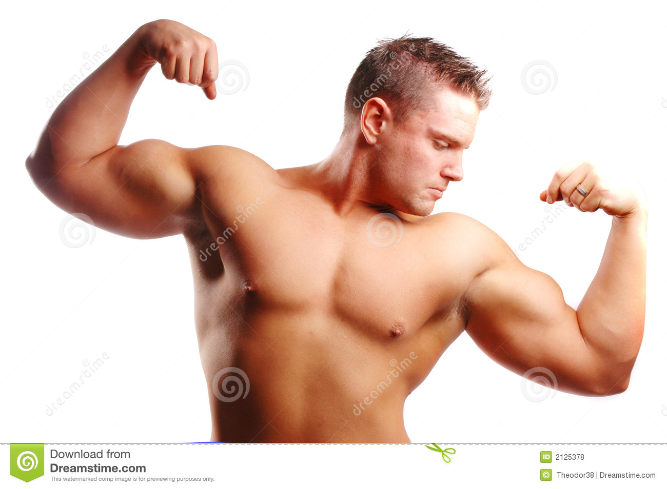 Body Builder Stock Photo Image Of Strength, Muscle, Builder - 2125378-8561