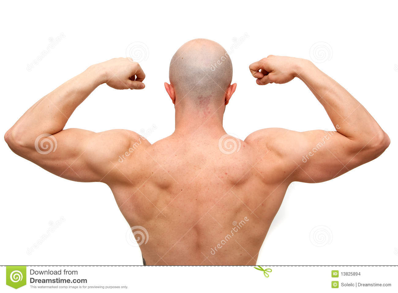 Body Builder Back Stock Images Image 13825894