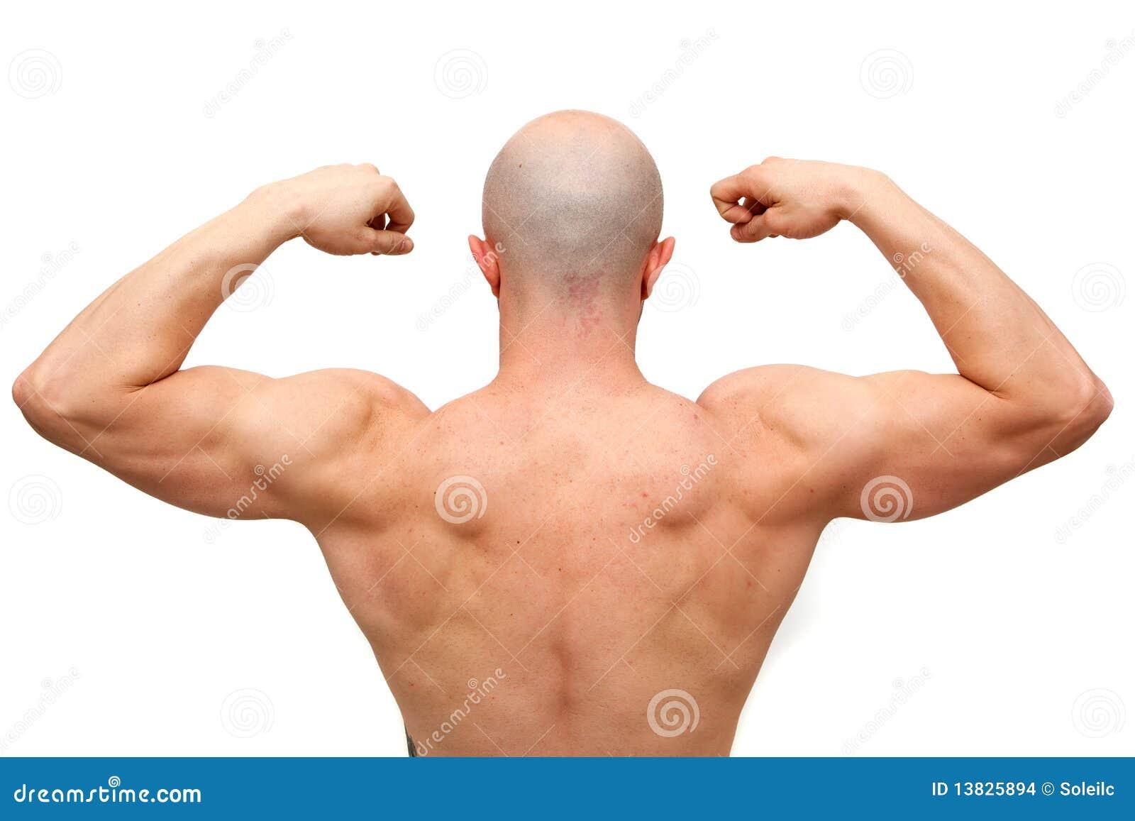Bathroom Designers Body Builder Back Stock Images Image 13825894