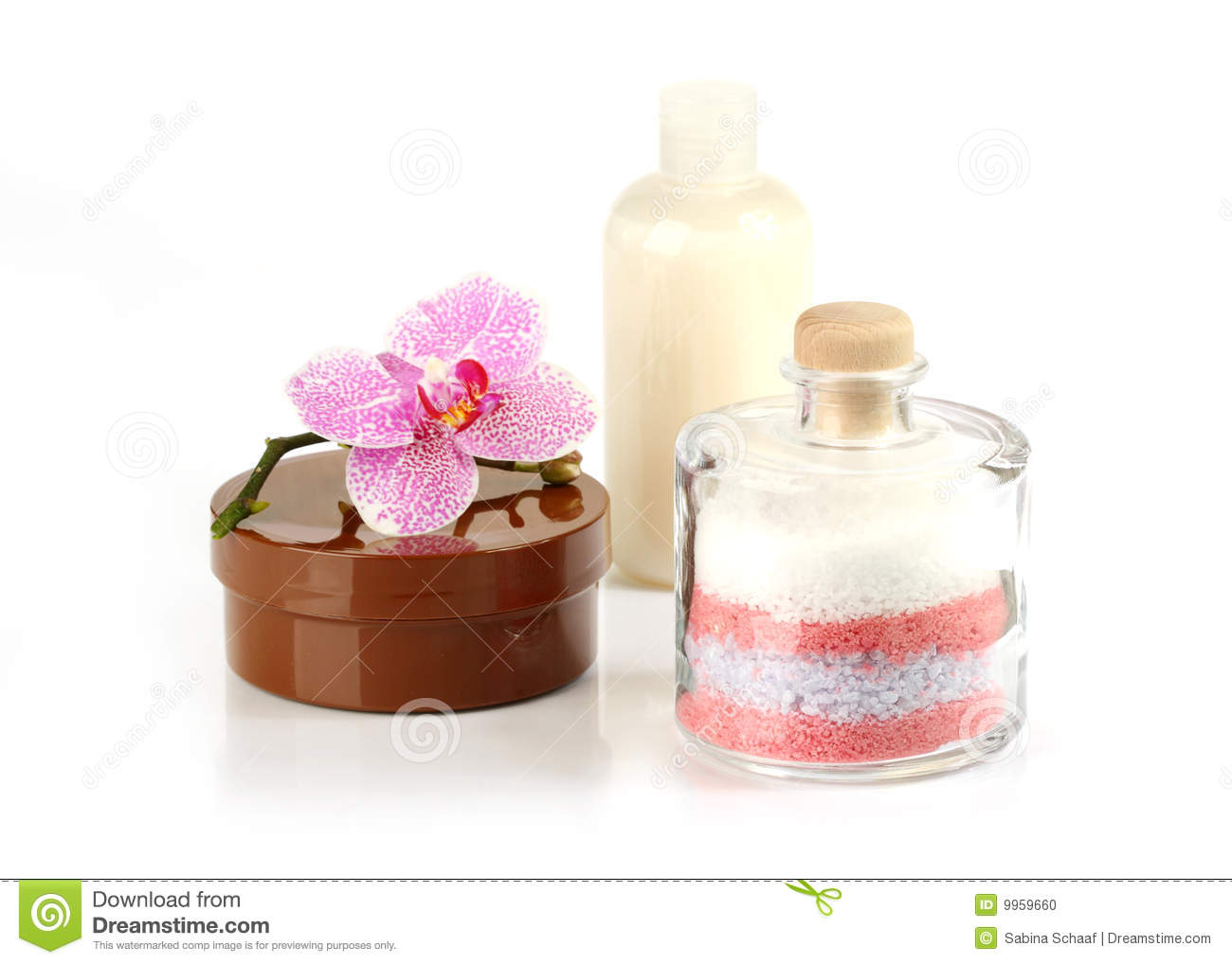 Body Care Products Stock Photo Image 9959660