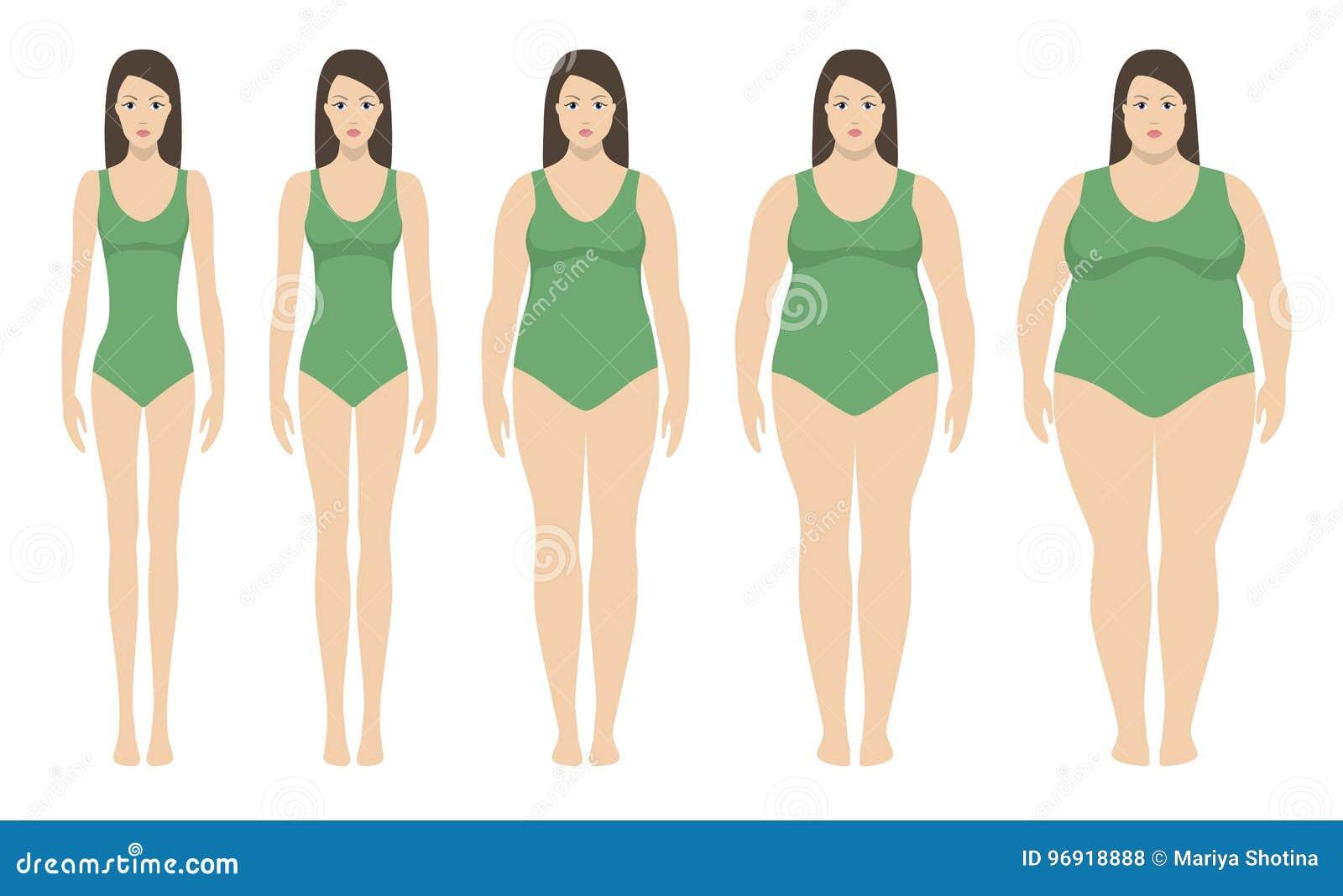 body ma index vektorillustration vom untergewicht zu extrem beleibtem frauenschattenbilder mit. Black Bedroom Furniture Sets. Home Design Ideas