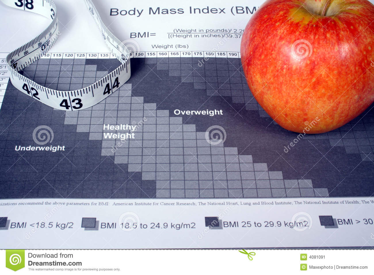 Body mass index chart stock image image of weight mass 4081091 body mass index chart geenschuldenfo Image collections