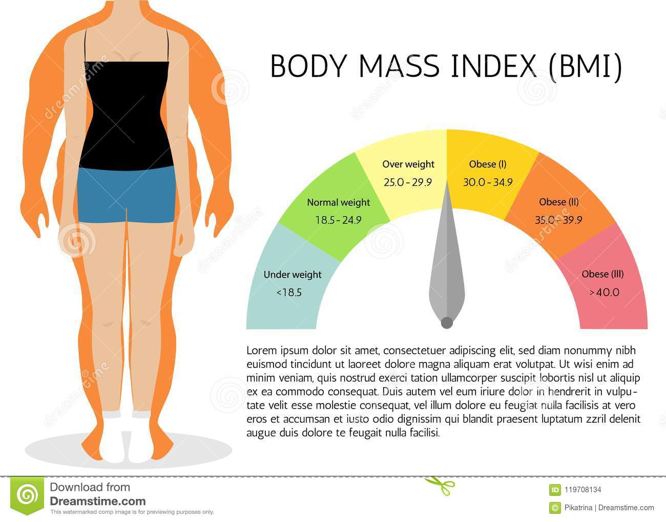 Body Mass Index, Illustration. Woman Silhouettes.Female Body with ...