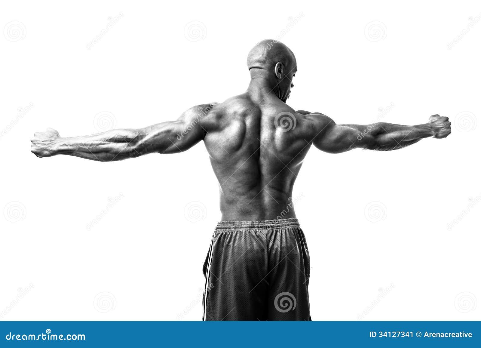 Bodybuilder Arms Spread Stock Image - Image: 34127341