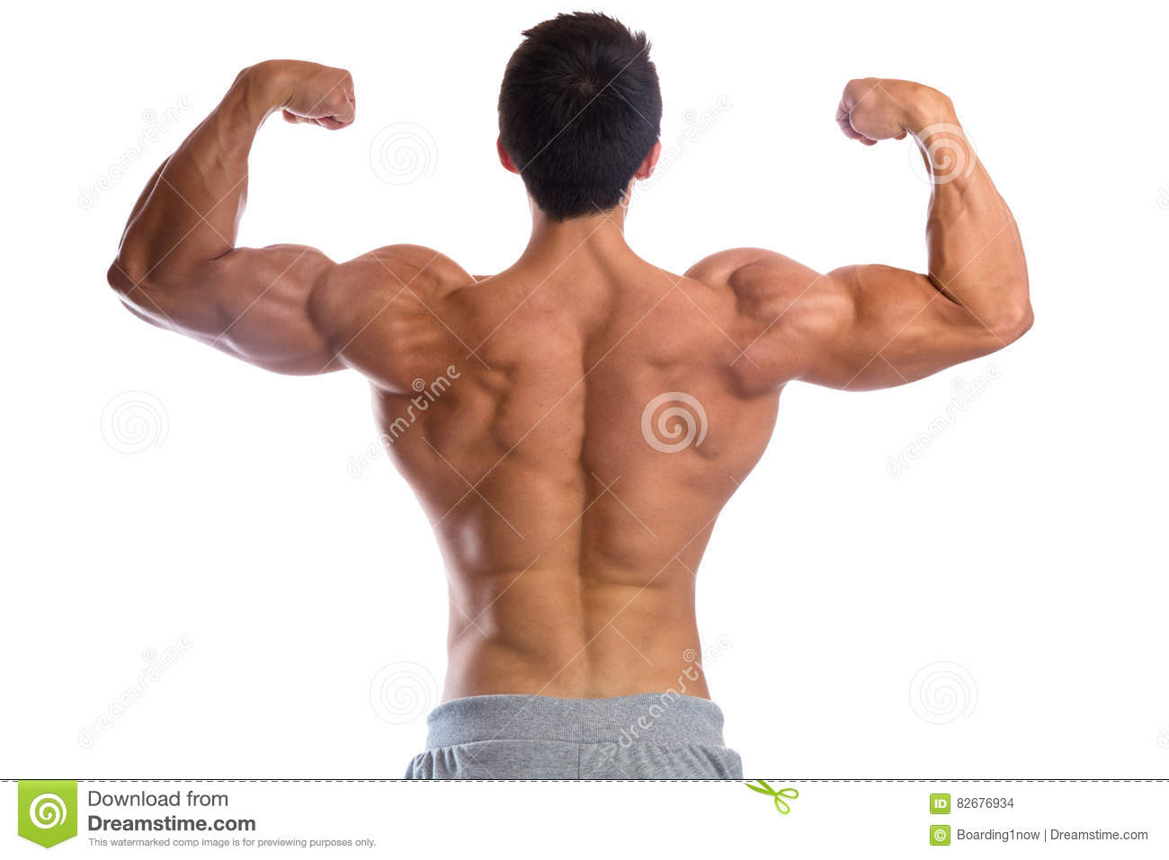 Bodybuilder Bodybuilding Muscles Body Builder Building Back Bice