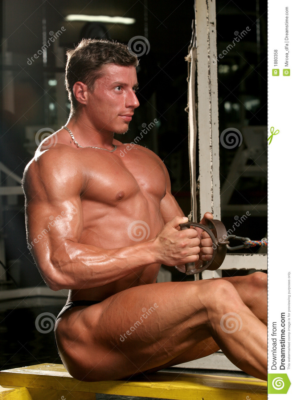image Straight male body builders hot men for