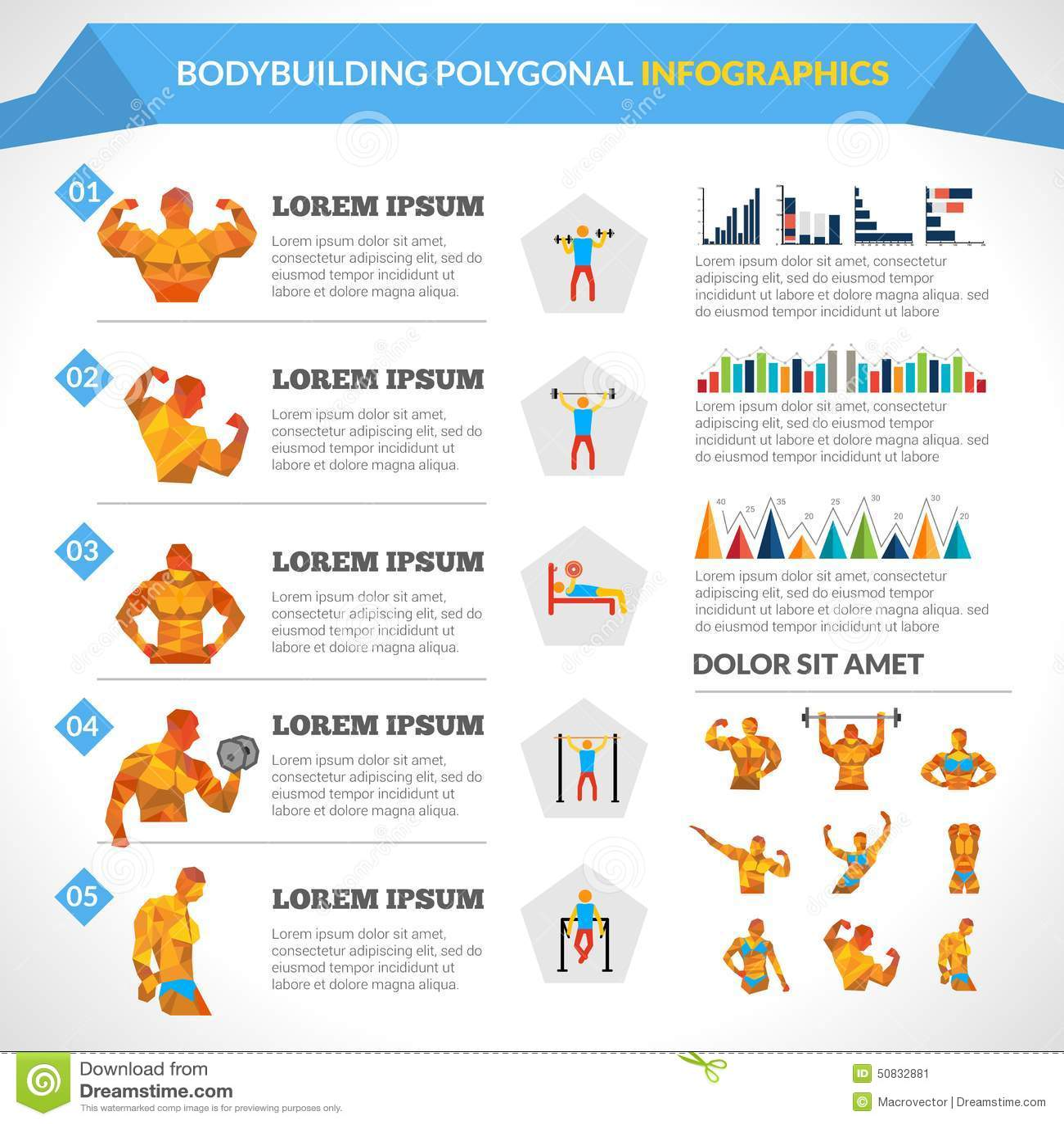 Bodybuilding Polygonal Infographics Stock Vector - Image