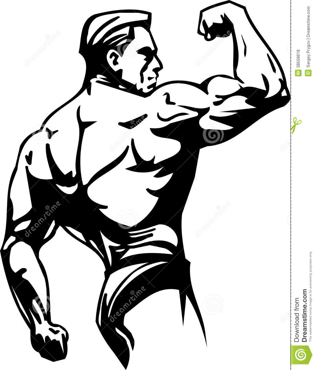 Bodybuilding And Powerlifting - Vector. Royalty Free Stock