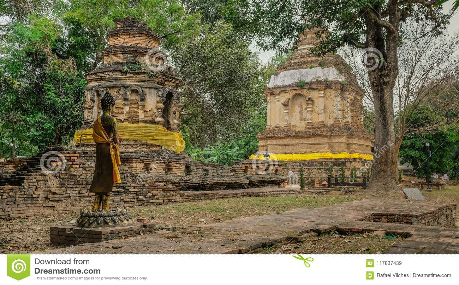 Boeddhistisch betaald in de wildernis