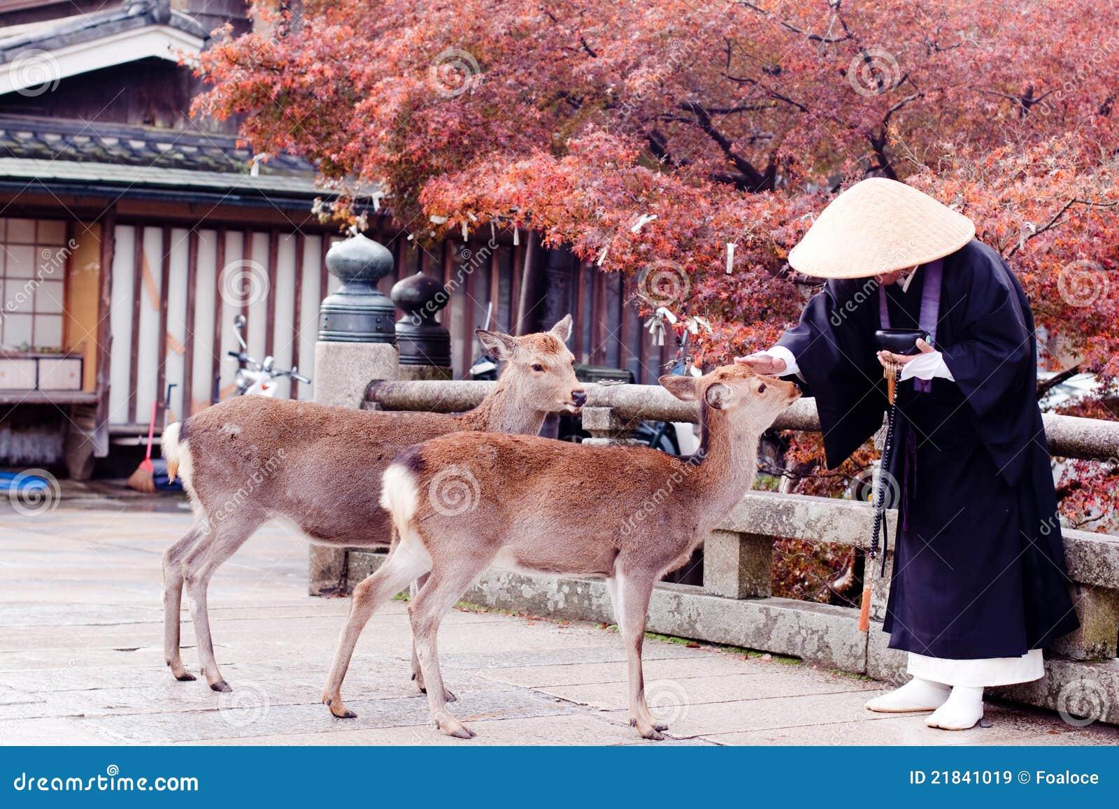 Boeddhistische monnik en twee deers