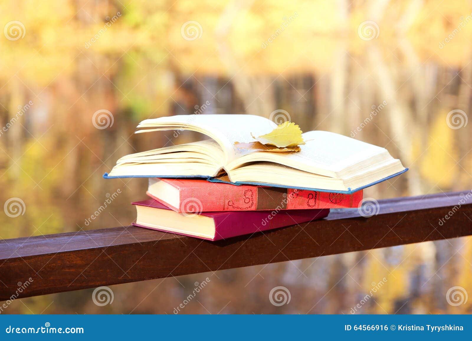 boek op een grond dichtbij meer de kennis is macht onderwijs verlichting
