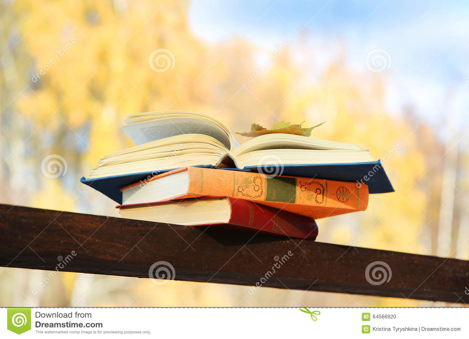 download boek op een grond dichtbij meer de kennis is macht onderwijs verlichting stock foto