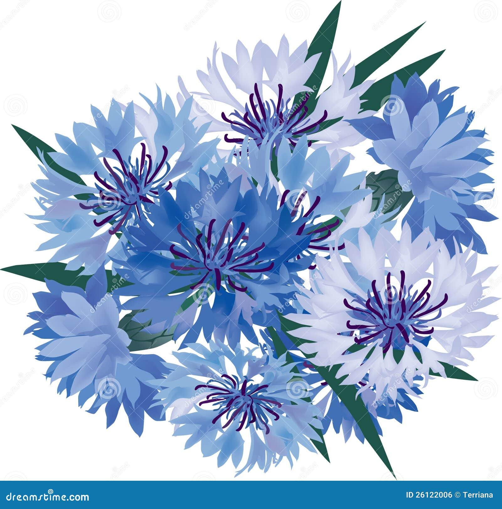 Boeket met blauwe bloemen royalty vrije stock afbeelding afbeelding 26122006 - Grafiek blauw grijze verf ...