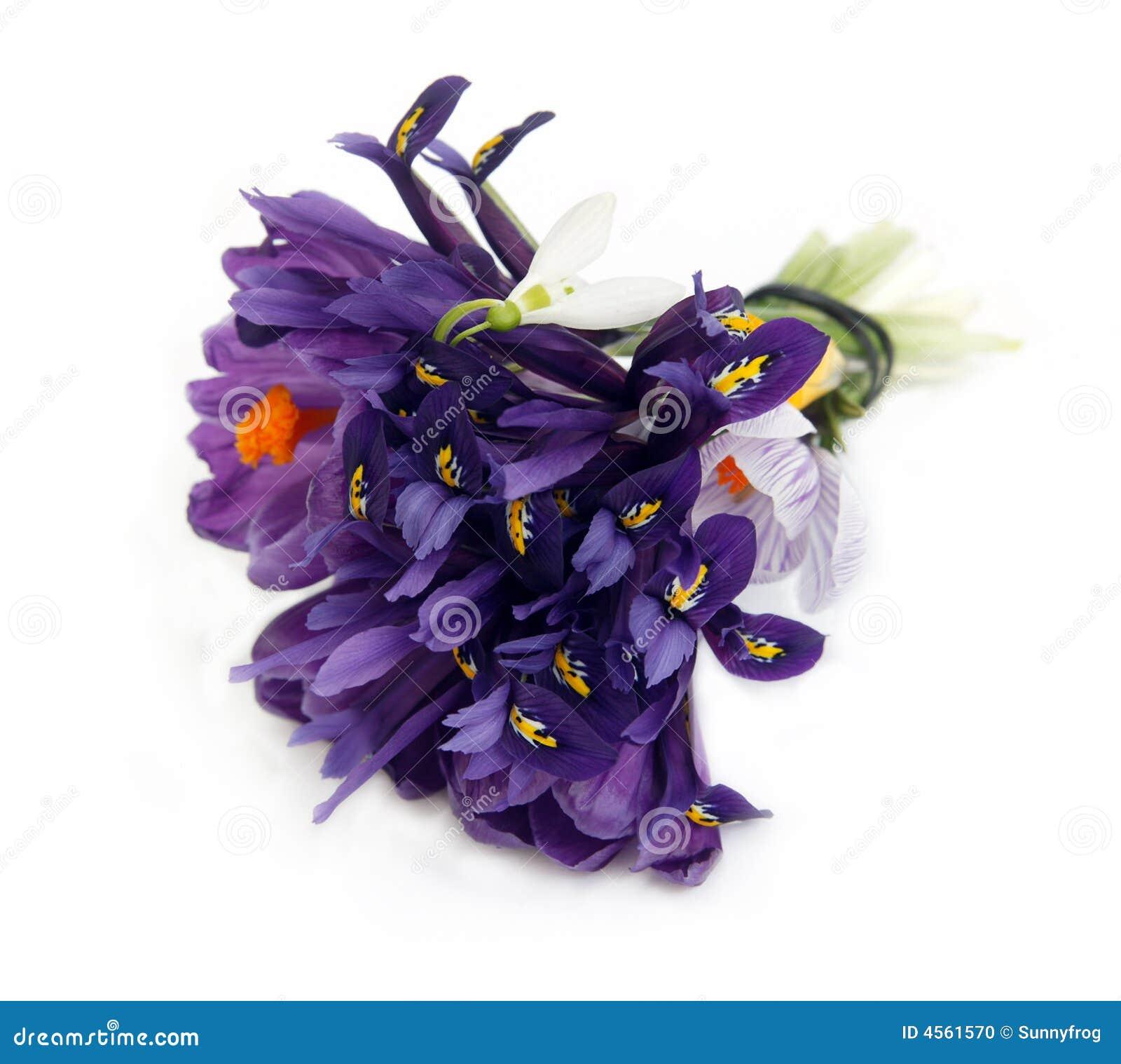 Boeket van purpere bloemen