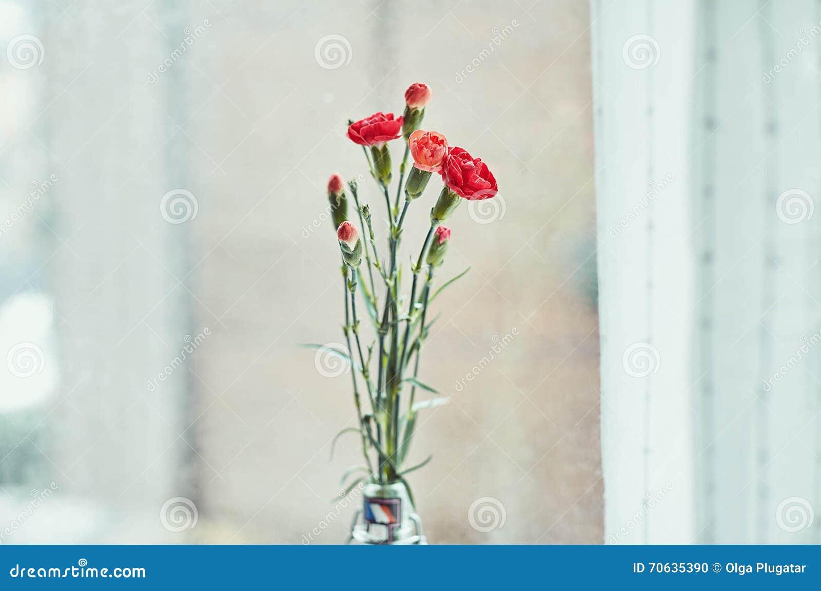 Boeket van rode anjers door het venster