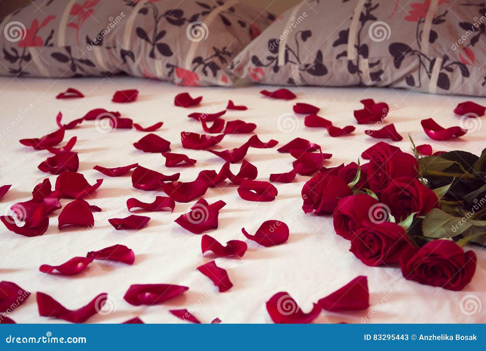 Bed Met Rozen.Boeket Van Rode Rozen En Zijn Verspreide Bloemblaadjes Op Een Bed