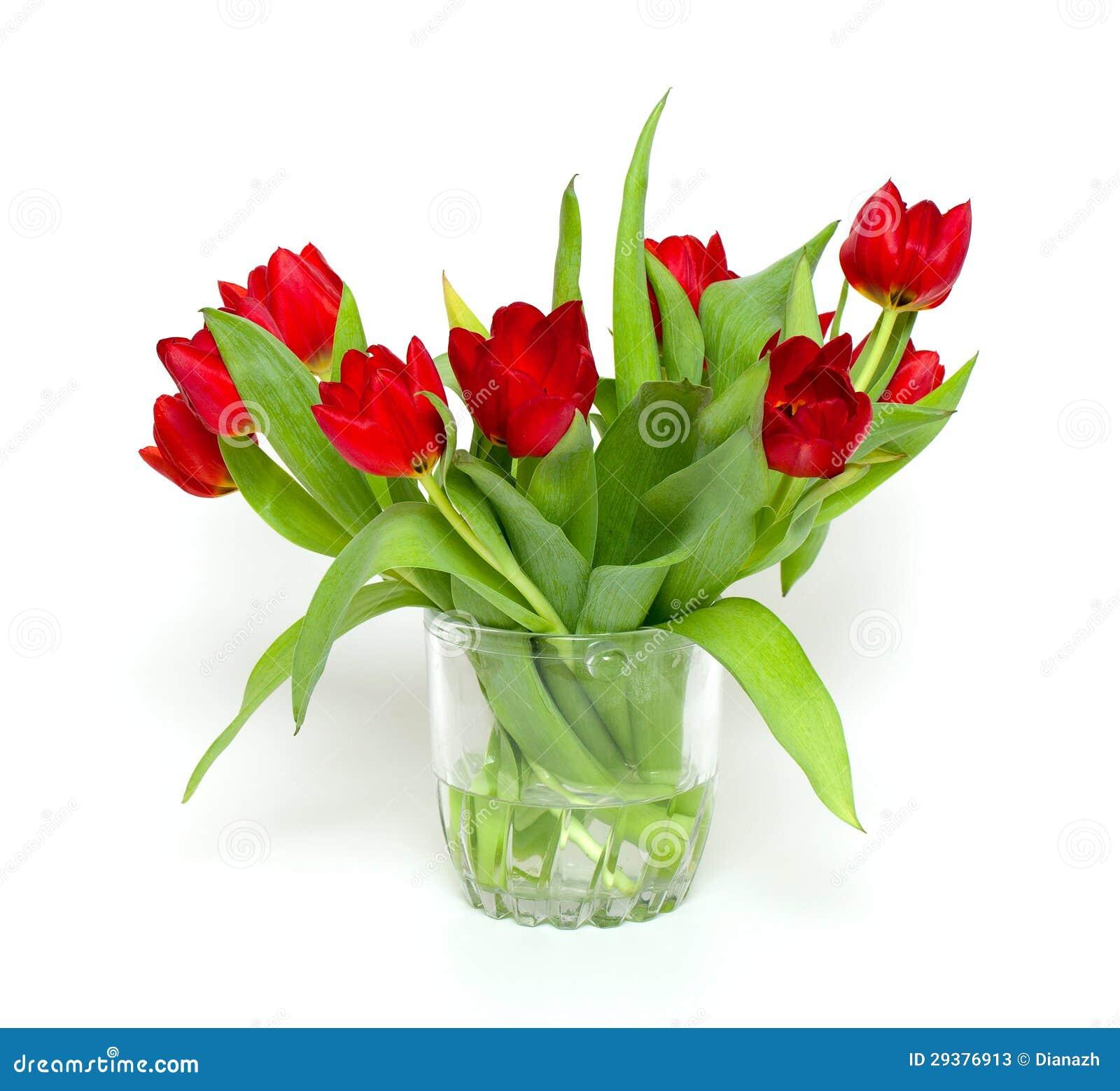 Boeket Van Rode Tulpen In Vaas Stock Foto u0026#39;s   Afbeelding  29376913