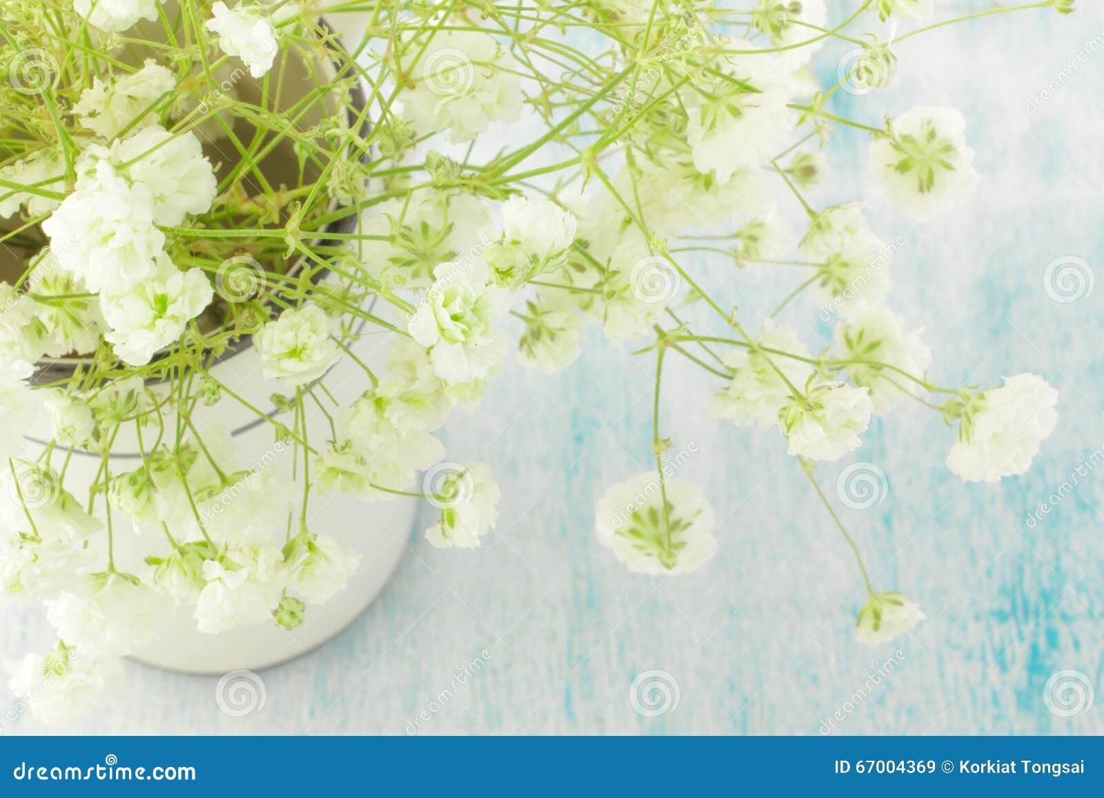 Boeket Van Witte Gypsophila (baby-Adem Bloemen), Lichte, Luchtige ...