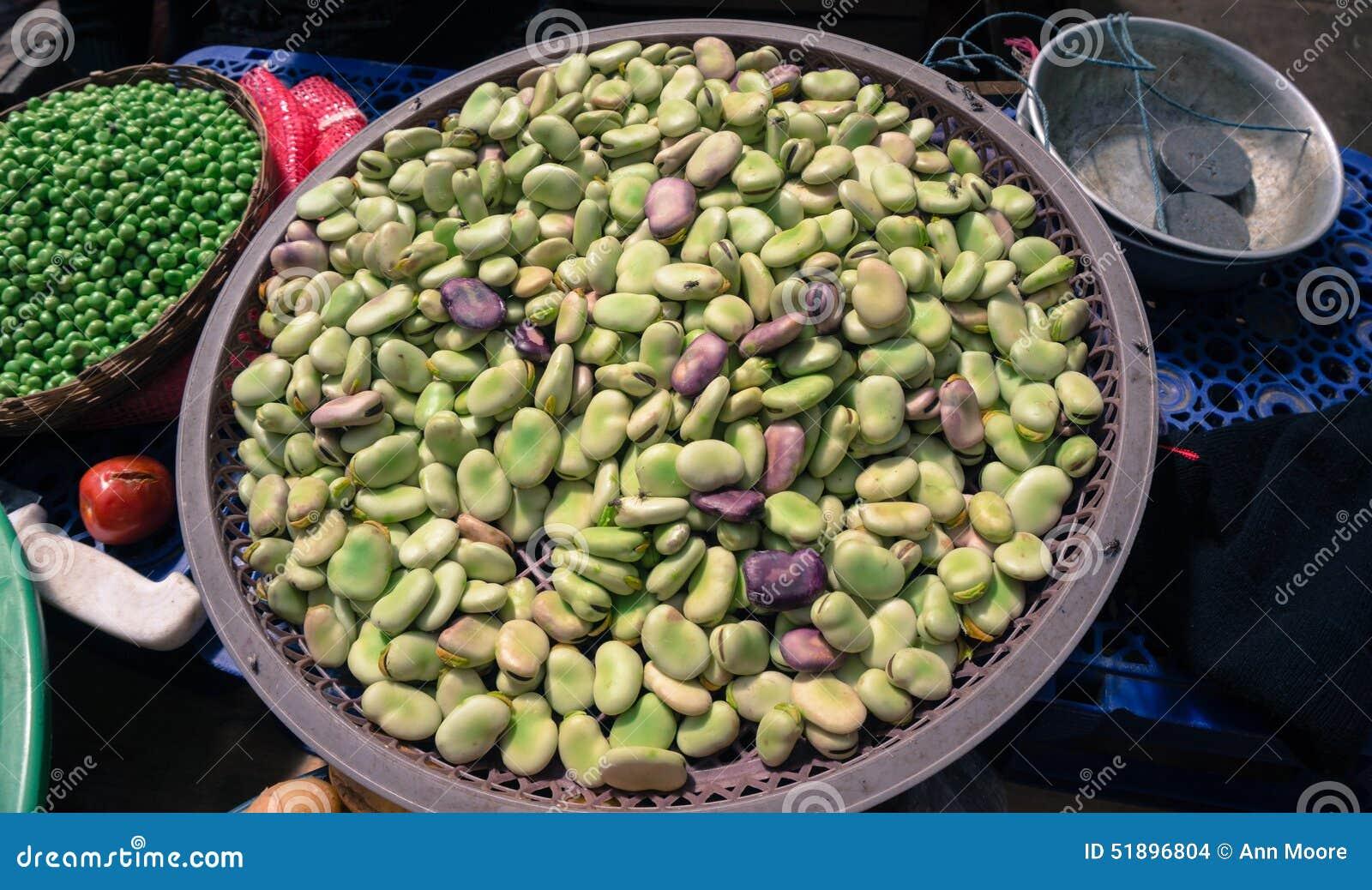 Fava Bohnen