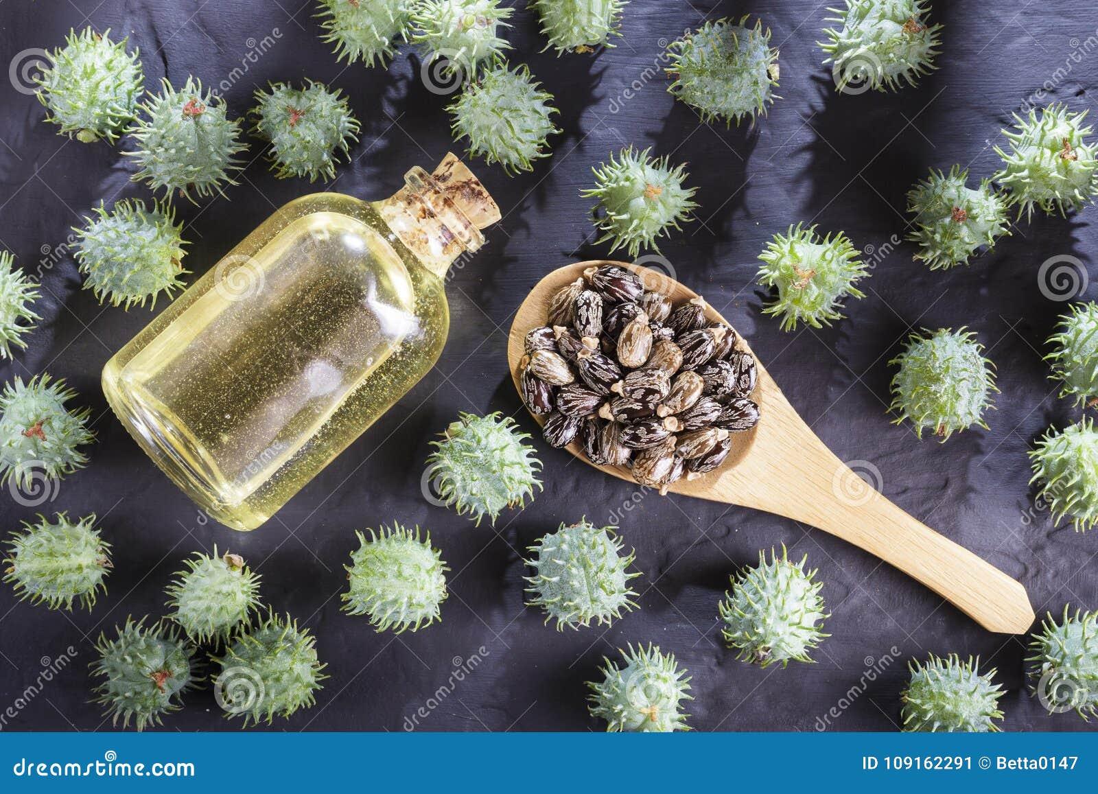 Bohnen und Rizinusöl auf der schwarzen Tabelle