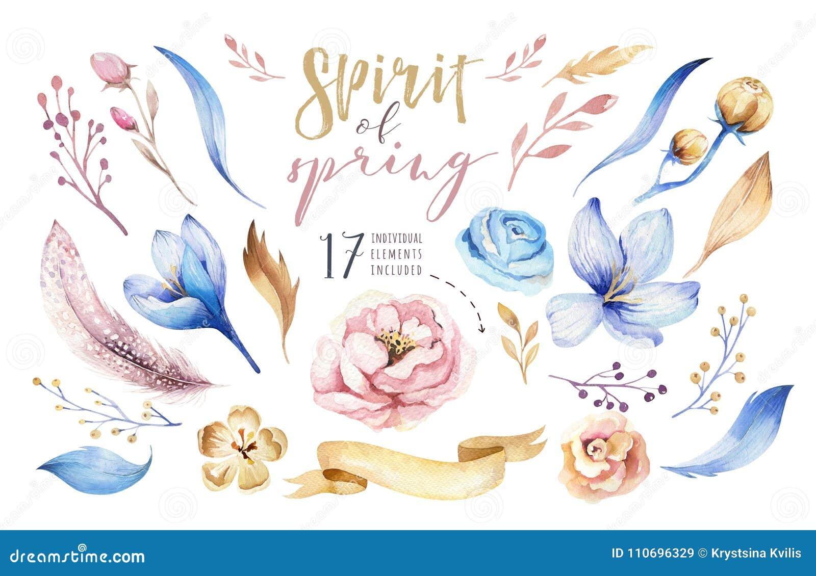 Boho花集合 与叶子和花,画的水彩的五颜六色的花卉收藏 春天或夏天花束设计
