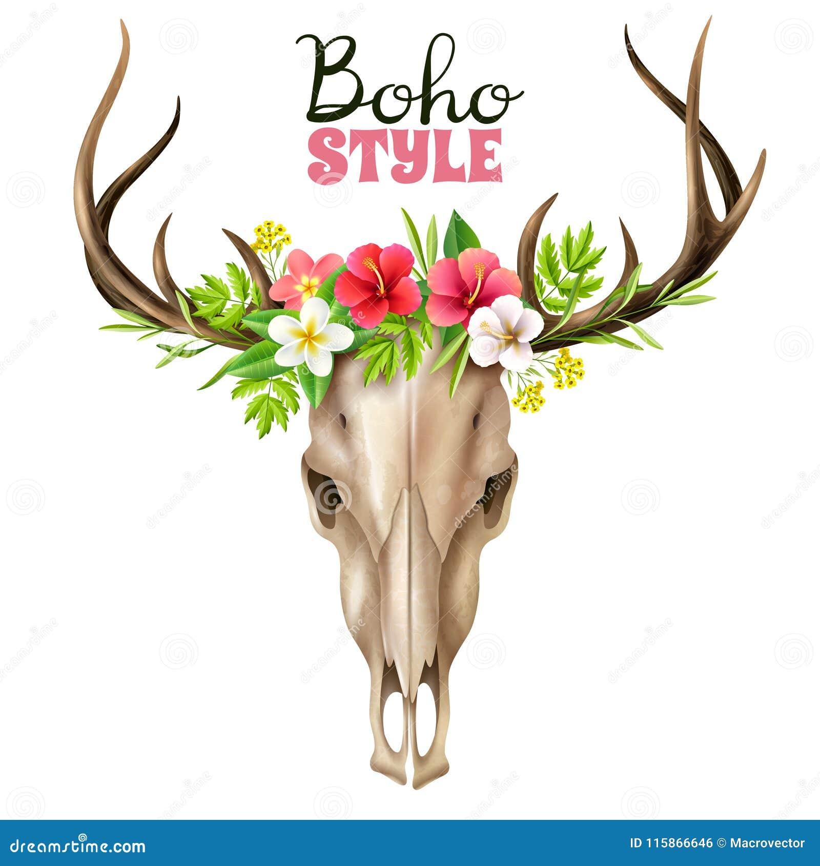 Boho Skull Illustration stock vector. Illustration of anatomy ...